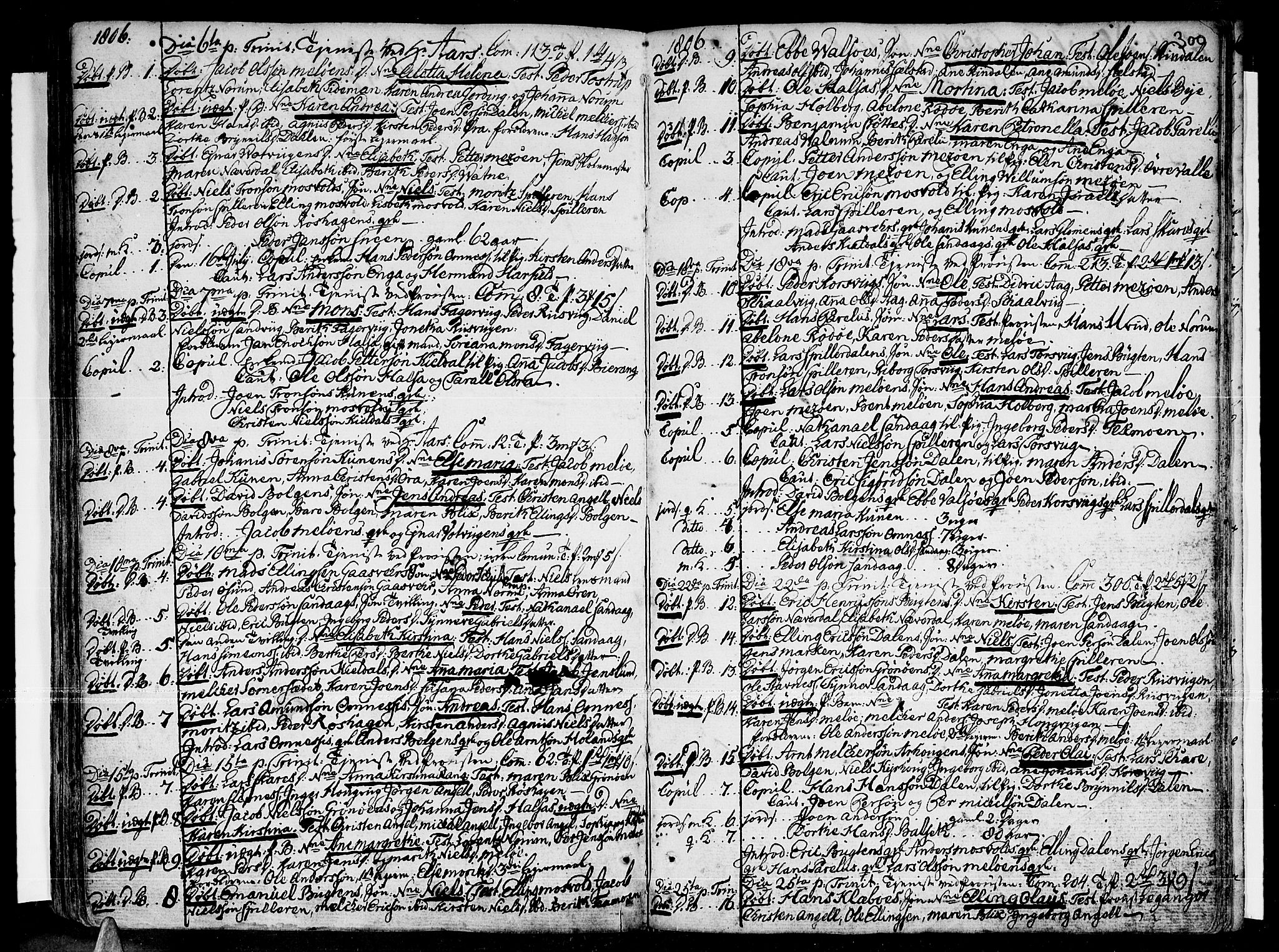 SAT, Ministerialprotokoller, klokkerbøker og fødselsregistre - Nordland, 841/L0591: Parish register (official) no. 841A03 /2, 1777-1819, p. 299-300