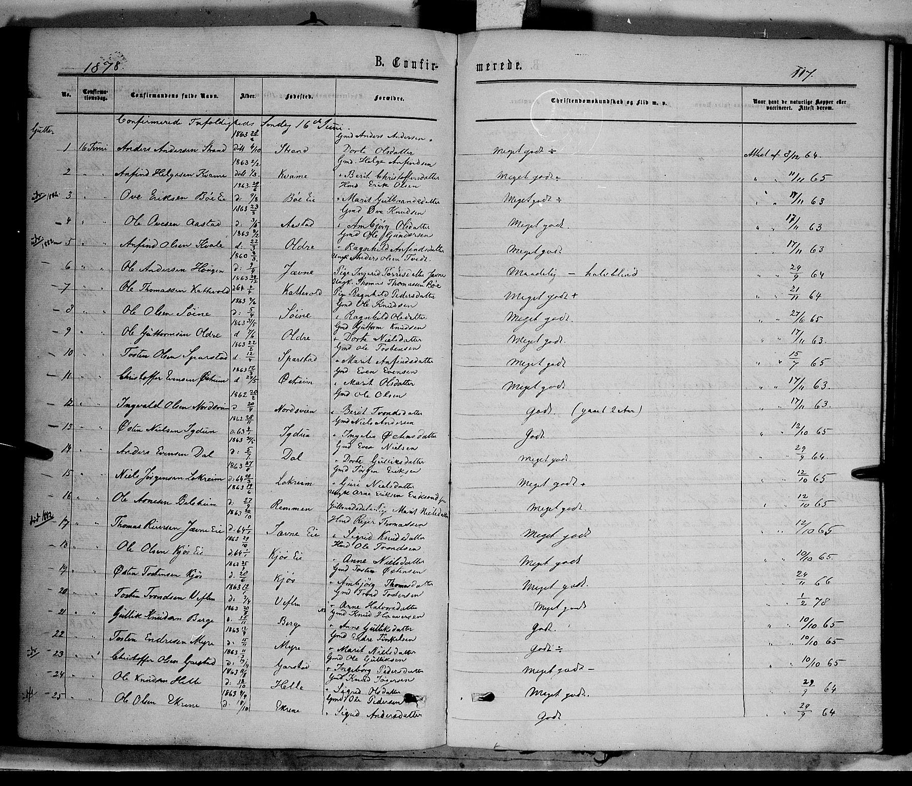 SAH, Vang prestekontor, Valdres, Parish register (official) no. 7, 1865-1881, p. 117