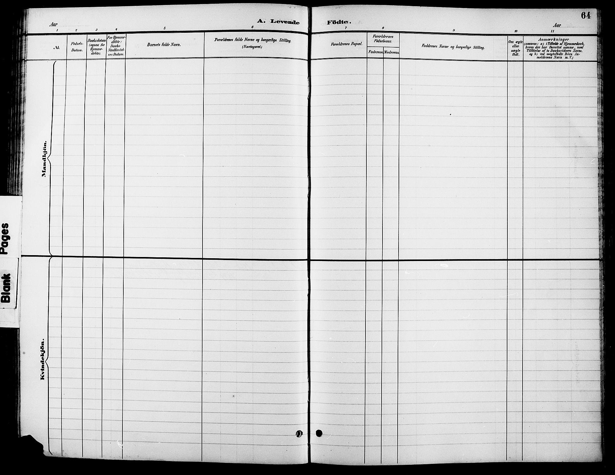 SAH, Lesja prestekontor, Parish register (copy) no. 7, 1895-1919, p. 64
