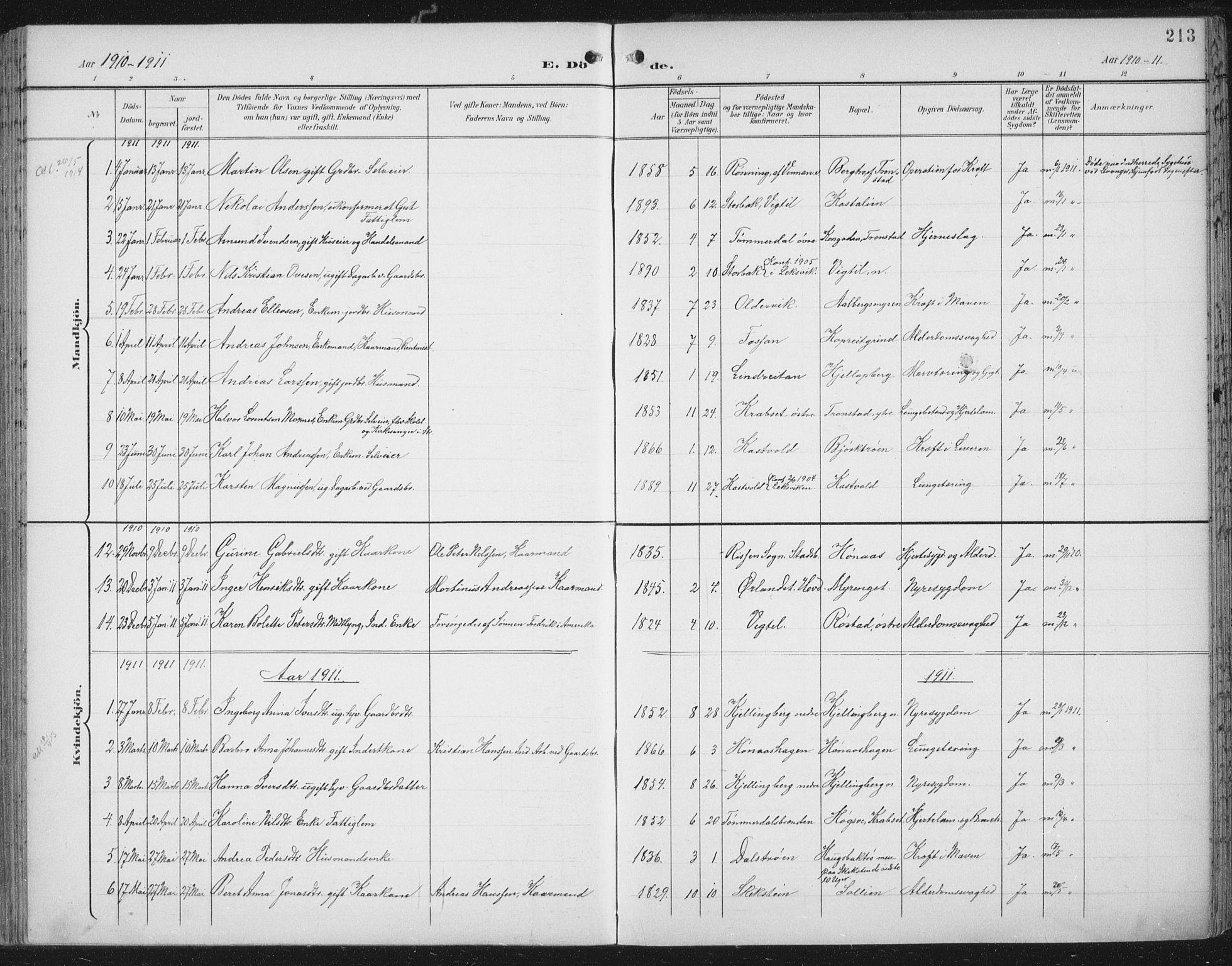 SAT, Ministerialprotokoller, klokkerbøker og fødselsregistre - Nord-Trøndelag, 701/L0011: Parish register (official) no. 701A11, 1899-1915, p. 213
