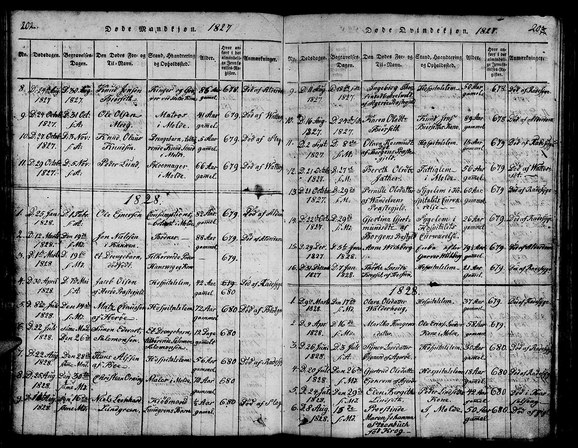 SAT, Ministerialprotokoller, klokkerbøker og fødselsregistre - Møre og Romsdal, 558/L0700: Parish register (copy) no. 558C01, 1818-1868, p. 202-203