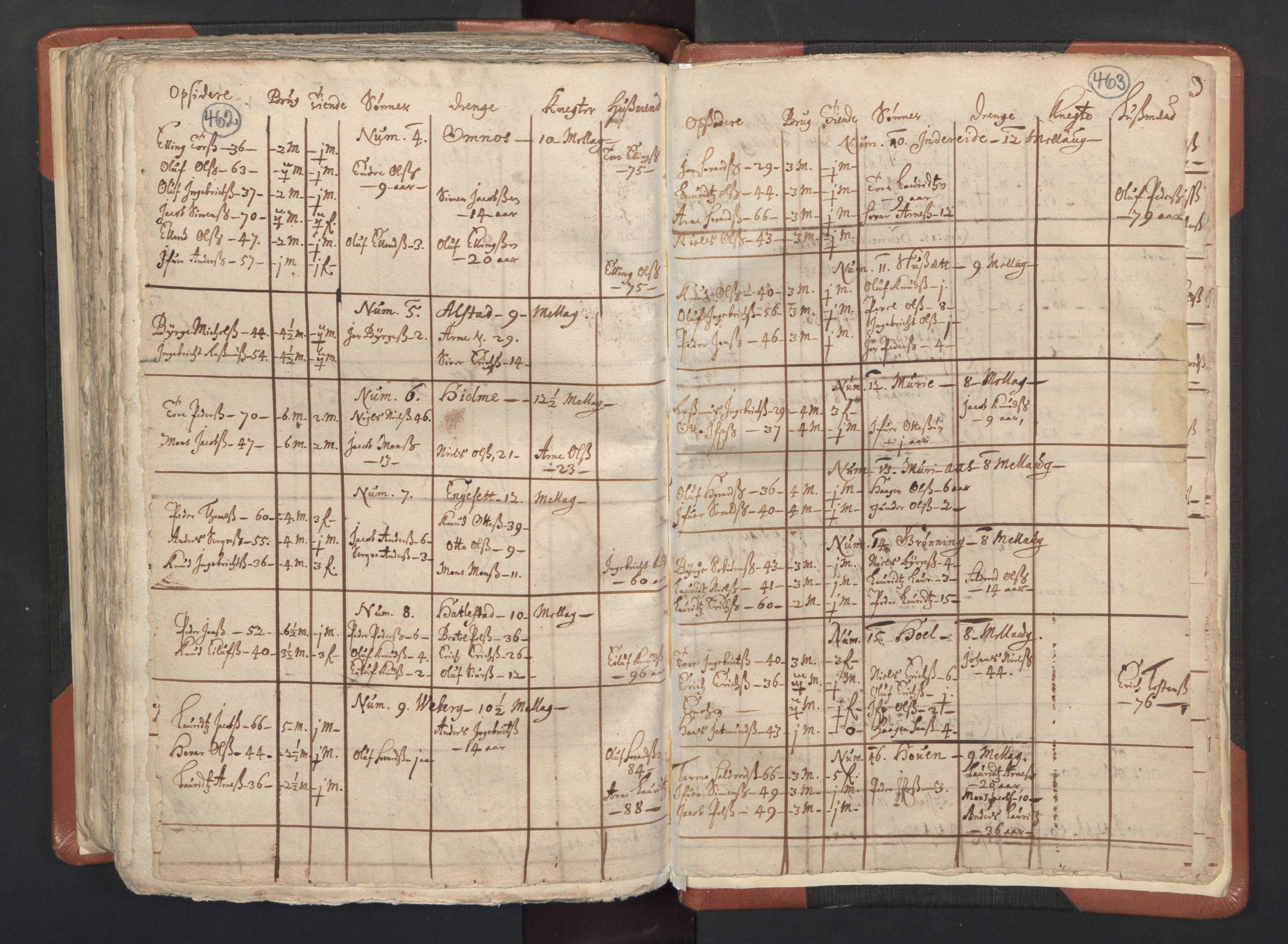 RA, Vicar's Census 1664-1666, no. 26: Sunnmøre deanery, 1664-1666, p. 462-463