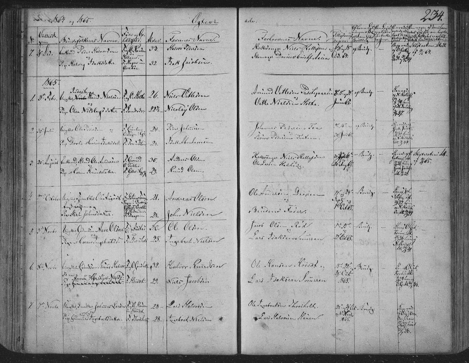 SAKO, Siljan kirkebøker, F/Fa/L0001: Parish register (official) no. 1, 1831-1870, p. 234