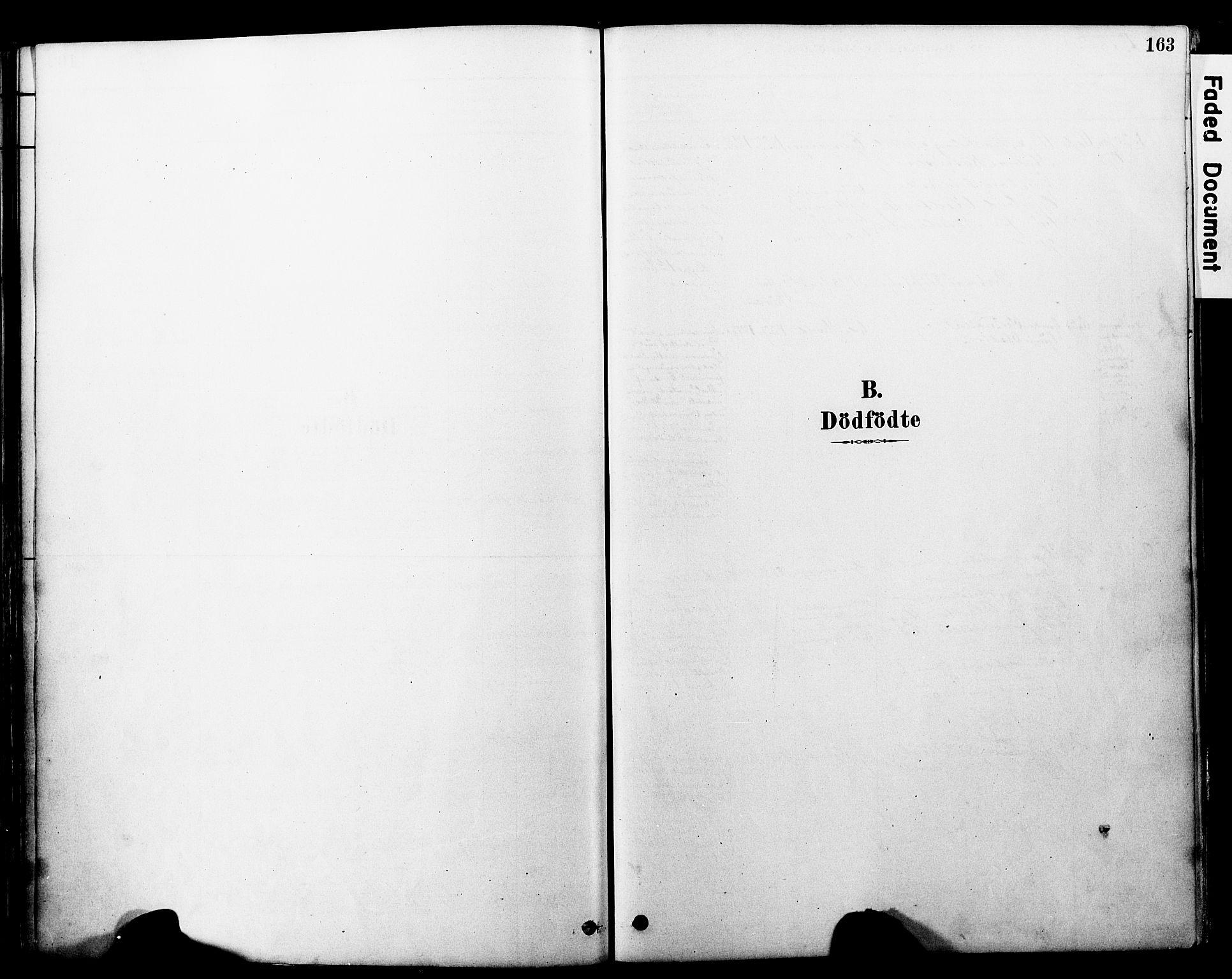 SAT, Ministerialprotokoller, klokkerbøker og fødselsregistre - Møre og Romsdal, 560/L0721: Parish register (official) no. 560A05, 1878-1917, p. 163
