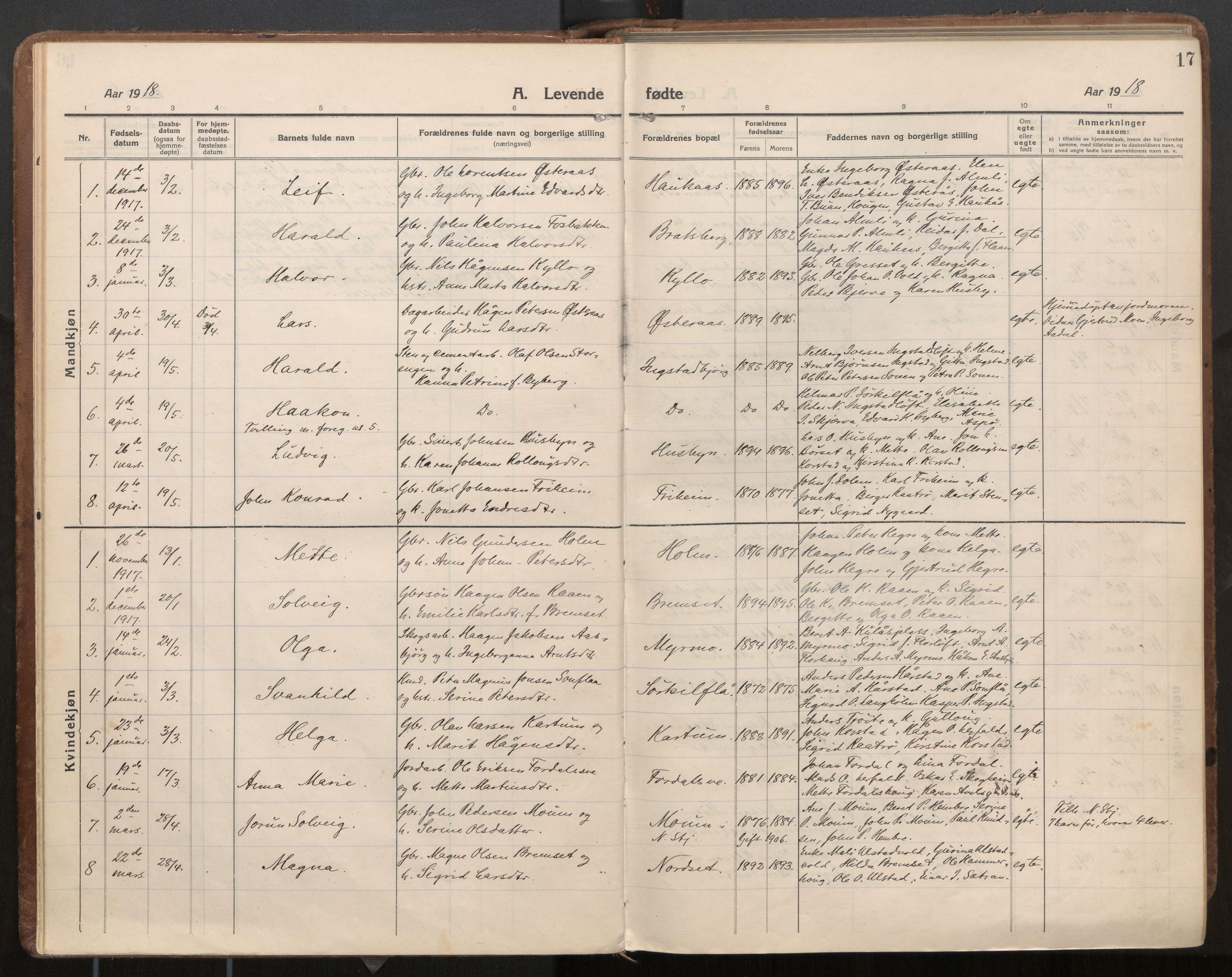 SAT, Ministerialprotokoller, klokkerbøker og fødselsregistre - Nord-Trøndelag, 703/L0037: Parish register (official) no. 703A10, 1915-1932, p. 17