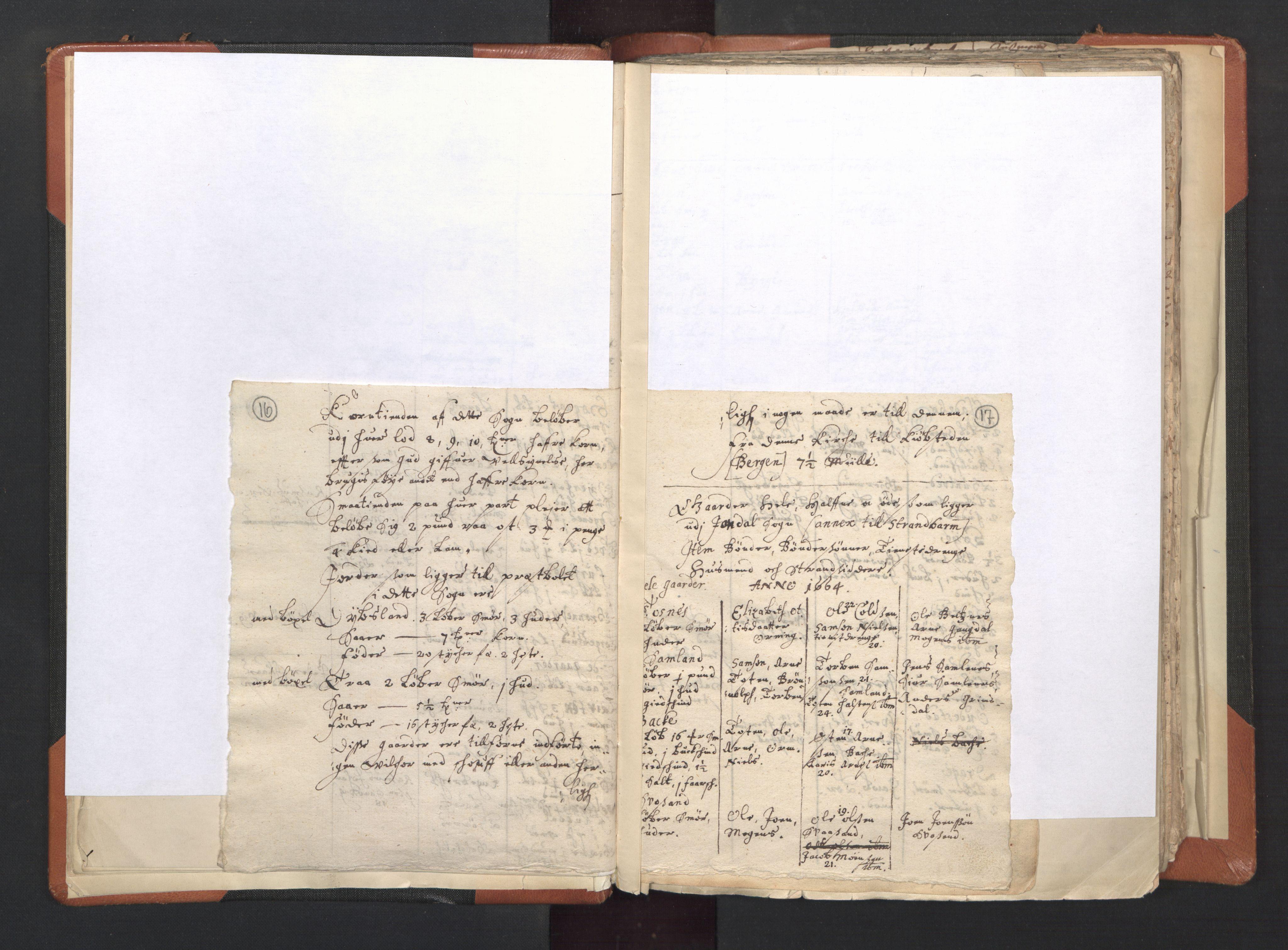 RA, Vicar's Census 1664-1666, no. 20: Sunnhordland deanery, 1664-1666, p. 16-17