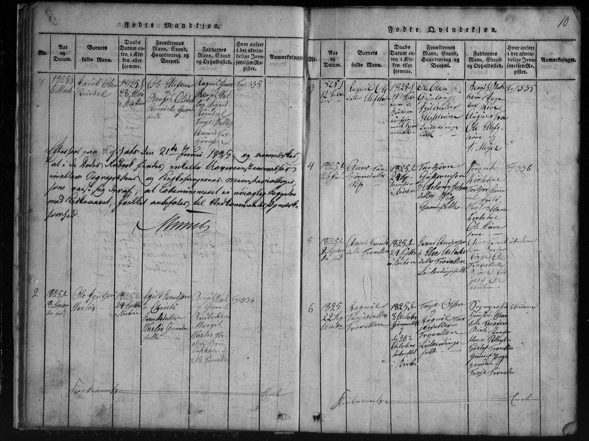 SAKO, Rauland kirkebøker, G/Gb/L0001: Parish register (copy) no. II 1, 1815-1886, p. 10