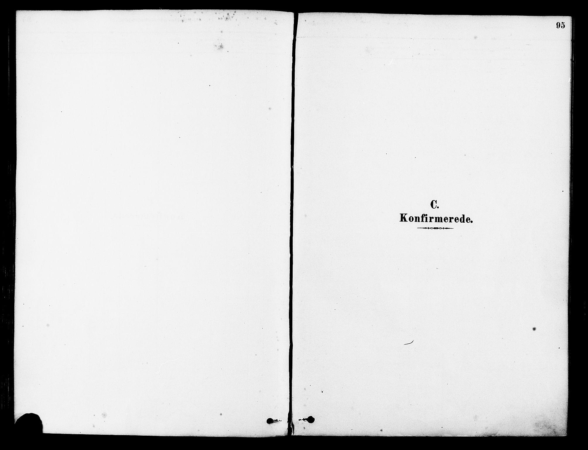 SAST, Tysvær sokneprestkontor, H/Ha/Haa/L0006: Parish register (official) no. A 6, 1878-1896, p. 95