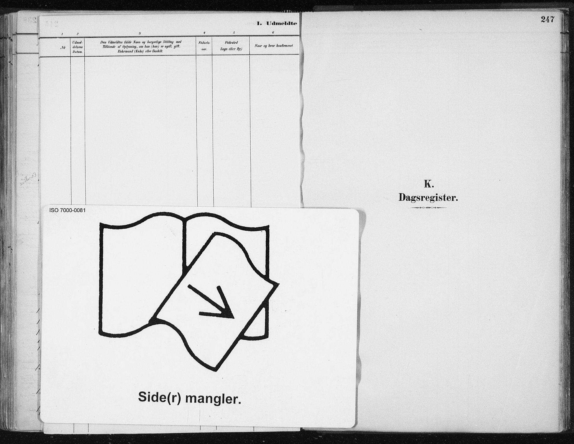 SAT, Ministerialprotokoller, klokkerbøker og fødselsregistre - Nord-Trøndelag, 701/L0010: Parish register (official) no. 701A10, 1883-1899, p. 247