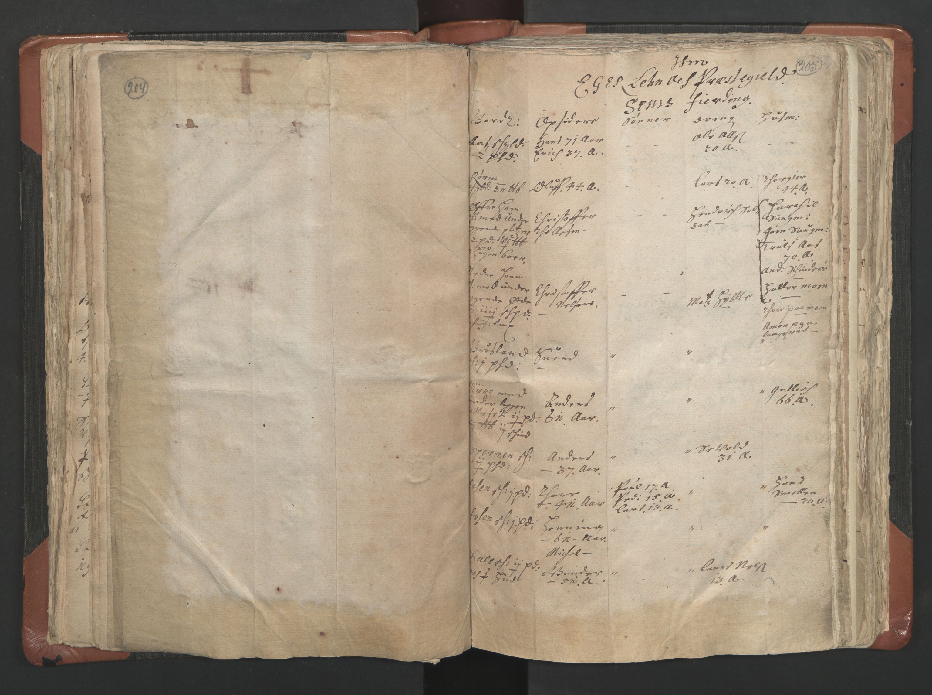 RA, Vicar's Census 1664-1666, no. 9: Bragernes deanery, 1664-1666, p. 204-205