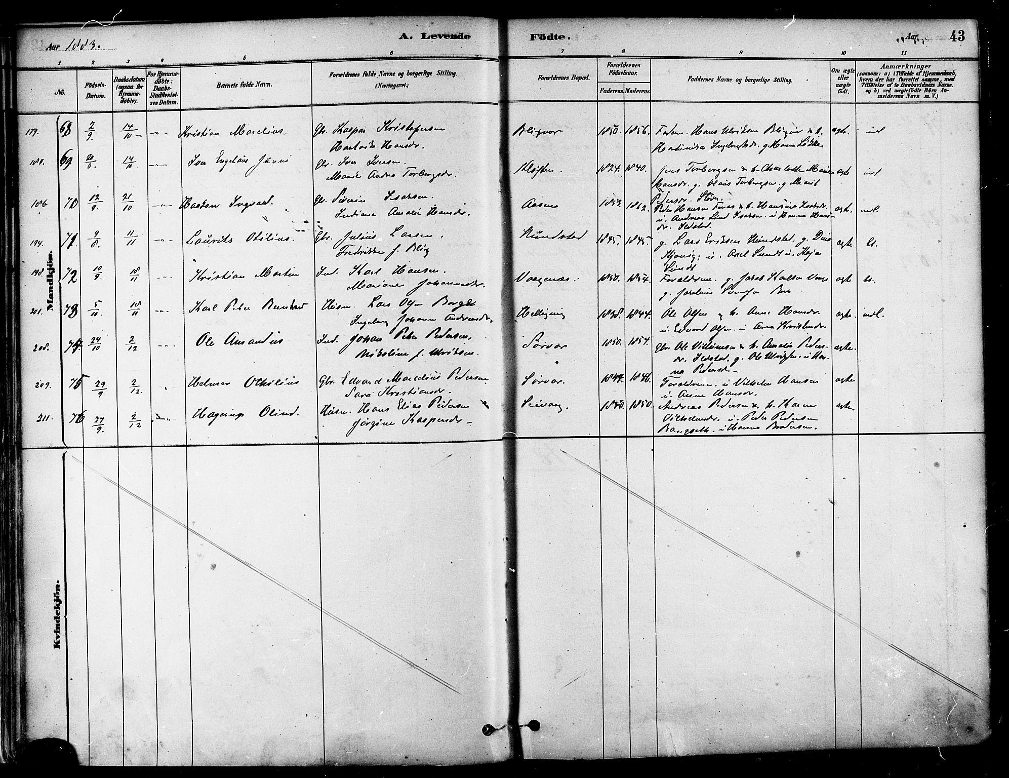 SAT, Ministerialprotokoller, klokkerbøker og fødselsregistre - Nordland, 802/L0054: Parish register (official) no. 802A01, 1879-1893, p. 43