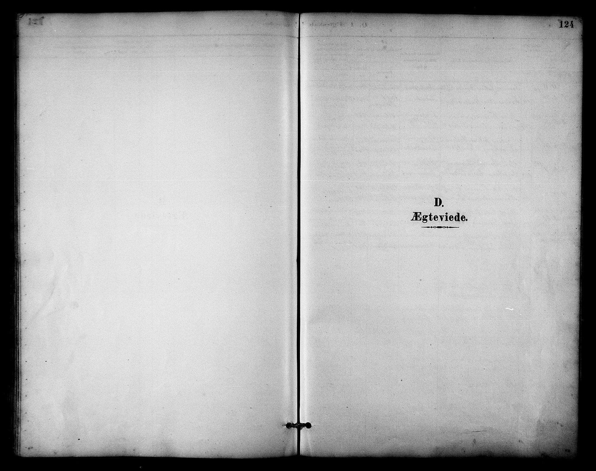 SATØ, Balsfjord sokneprestembete, Parish register (copy) no. 3, 1887-1909, p. 124