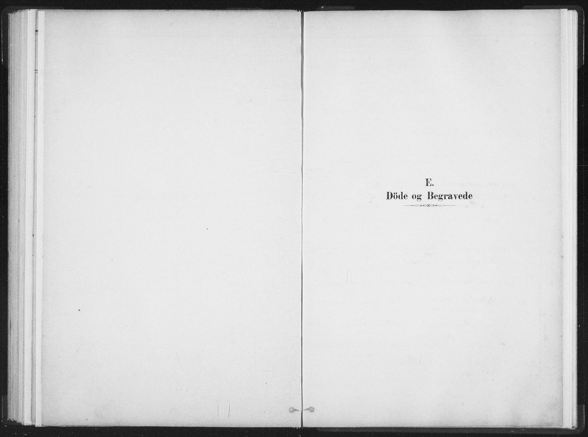 SAT, Ministerialprotokoller, klokkerbøker og fødselsregistre - Nordland, 890/L1286: Parish register (official) no. 890A01, 1882-1902