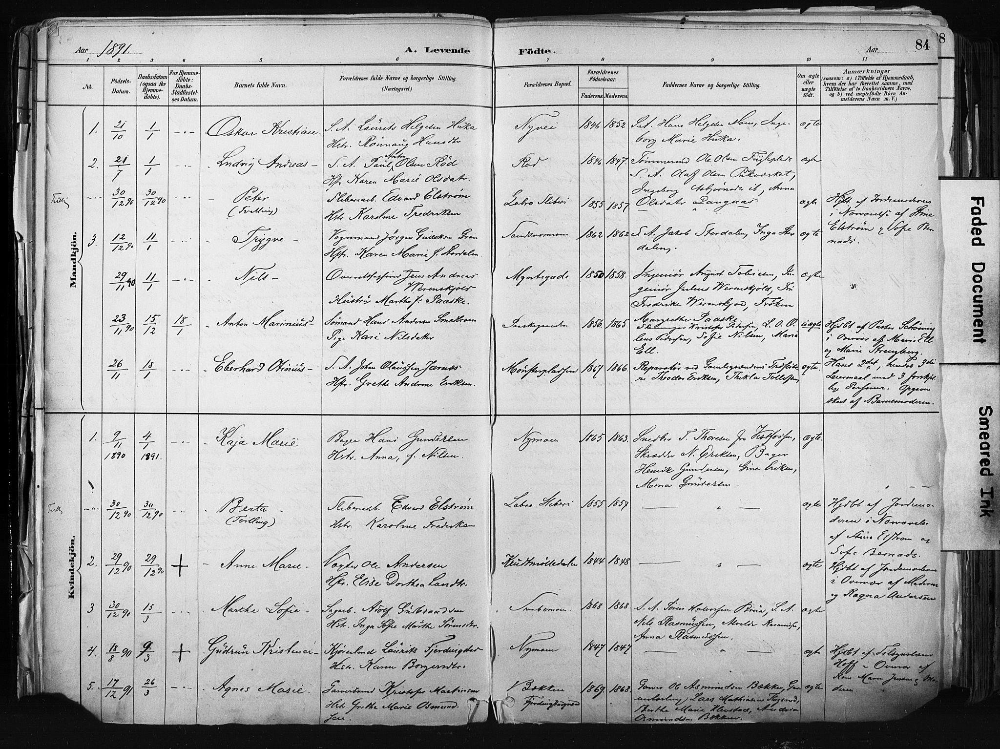 SAKO, Kongsberg kirkebøker, F/Fb/L0002: Parish register (official) no. II 2, 1886-1896, p. 84