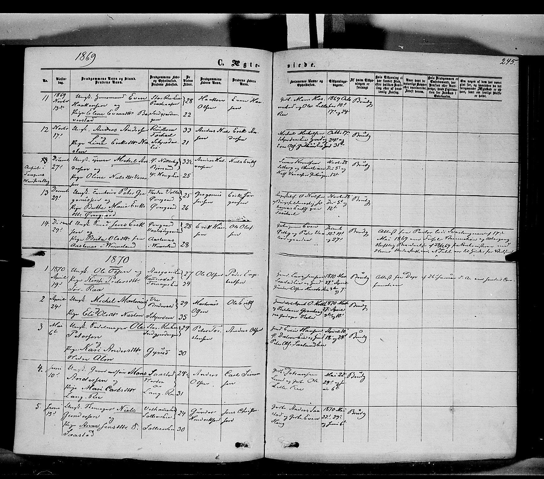 SAH, Stange prestekontor, K/L0013: Parish register (official) no. 13, 1862-1879, p. 245