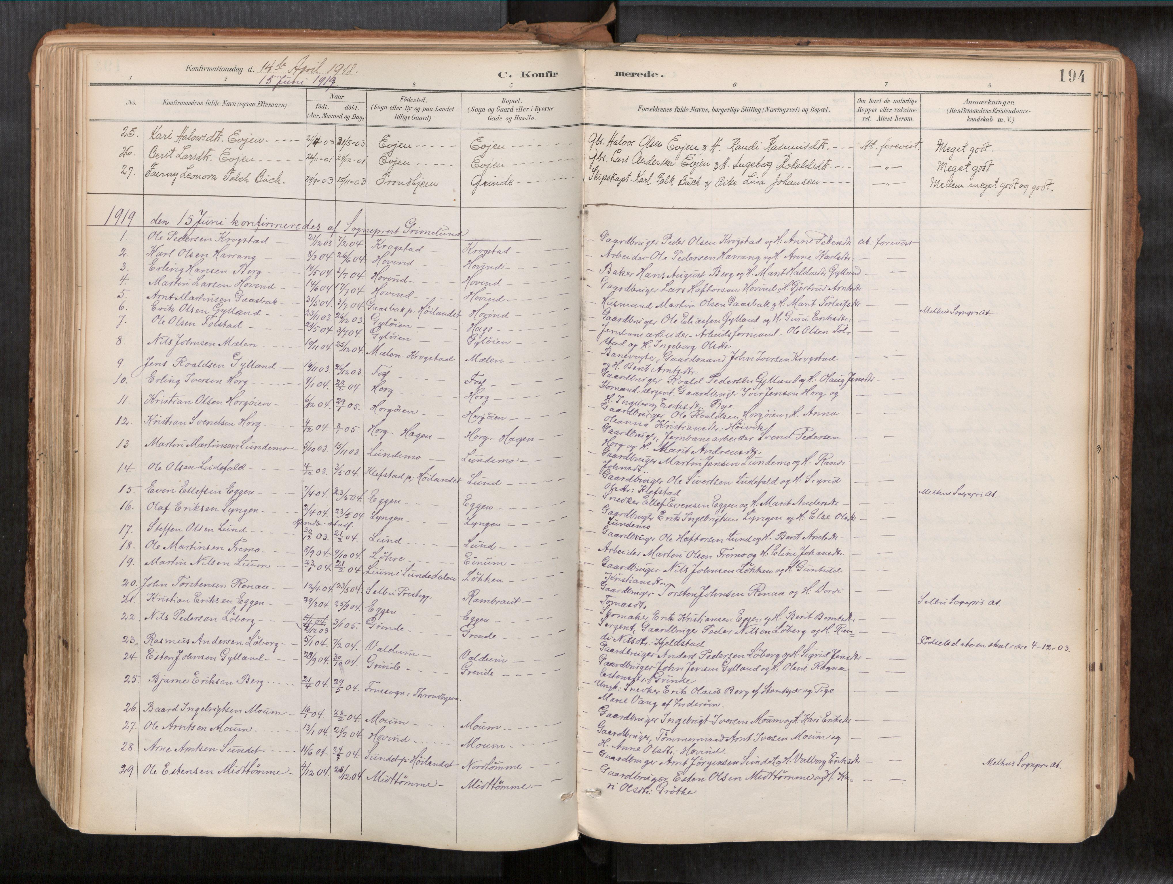 SAT, Ministerialprotokoller, klokkerbøker og fødselsregistre - Sør-Trøndelag, 692/L1105b: Parish register (official) no. 692A06, 1891-1934, p. 194