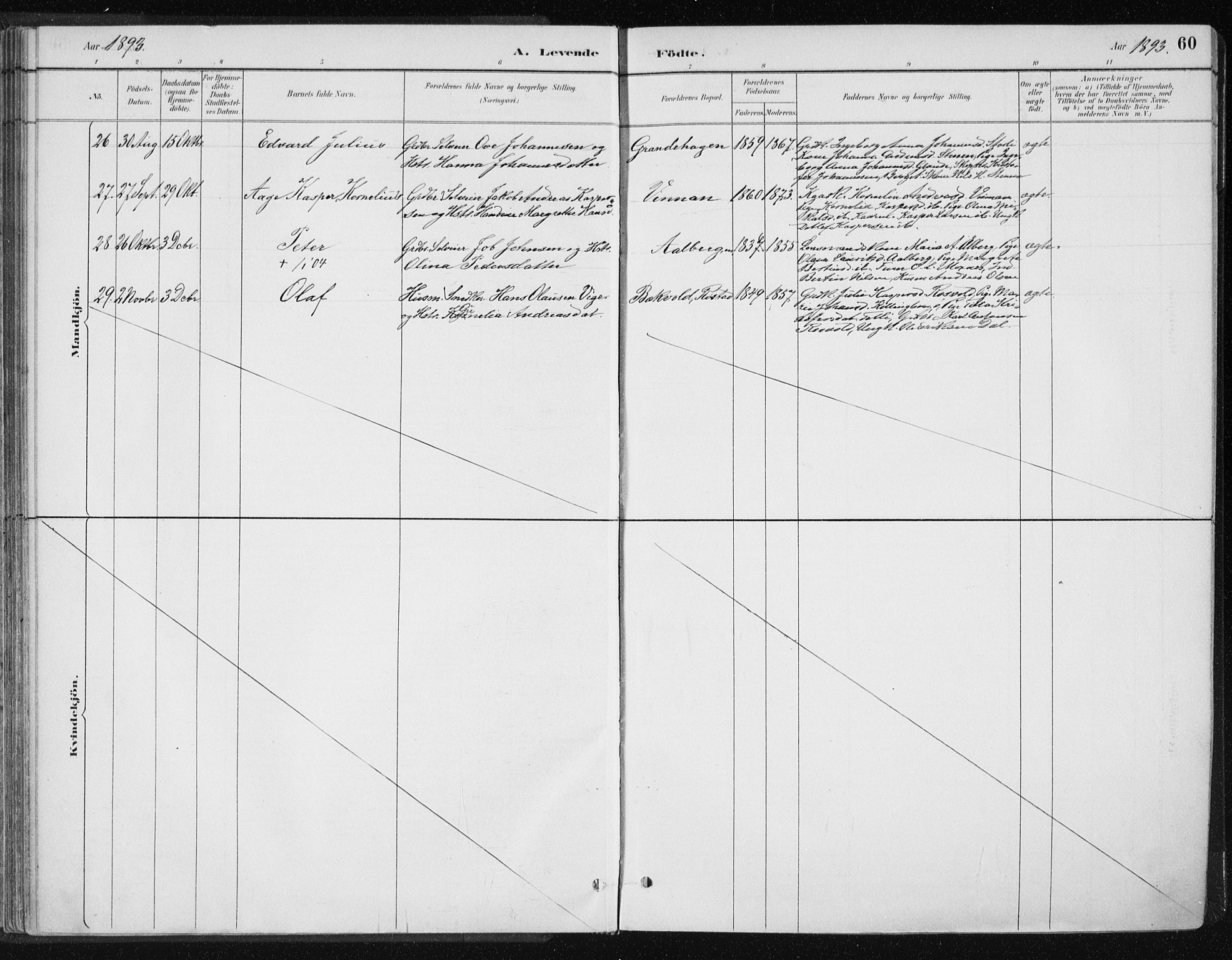 SAT, Ministerialprotokoller, klokkerbøker og fødselsregistre - Nord-Trøndelag, 701/L0010: Parish register (official) no. 701A10, 1883-1899, p. 60