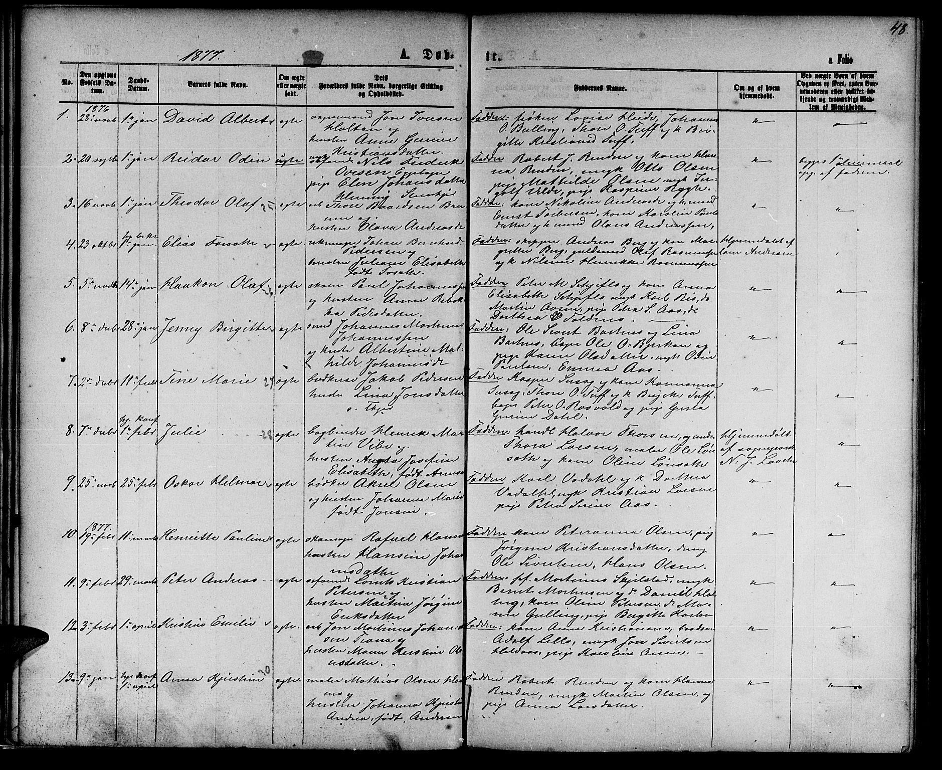 SAT, Ministerialprotokoller, klokkerbøker og fødselsregistre - Nord-Trøndelag, 739/L0373: Parish register (copy) no. 739C01, 1865-1882, p. 48