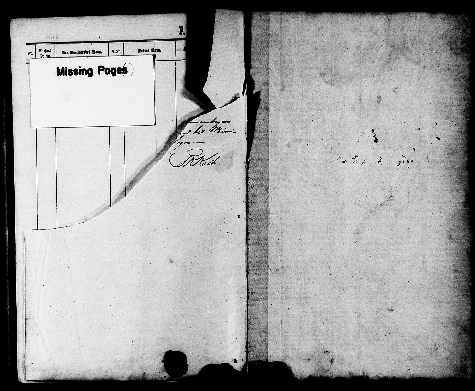 SAT, Ministerialprotokoller, klokkerbøker og fødselsregistre - Nord-Trøndelag, 703/L0038: Parish register (copy) no. 703C01, 1864-1870
