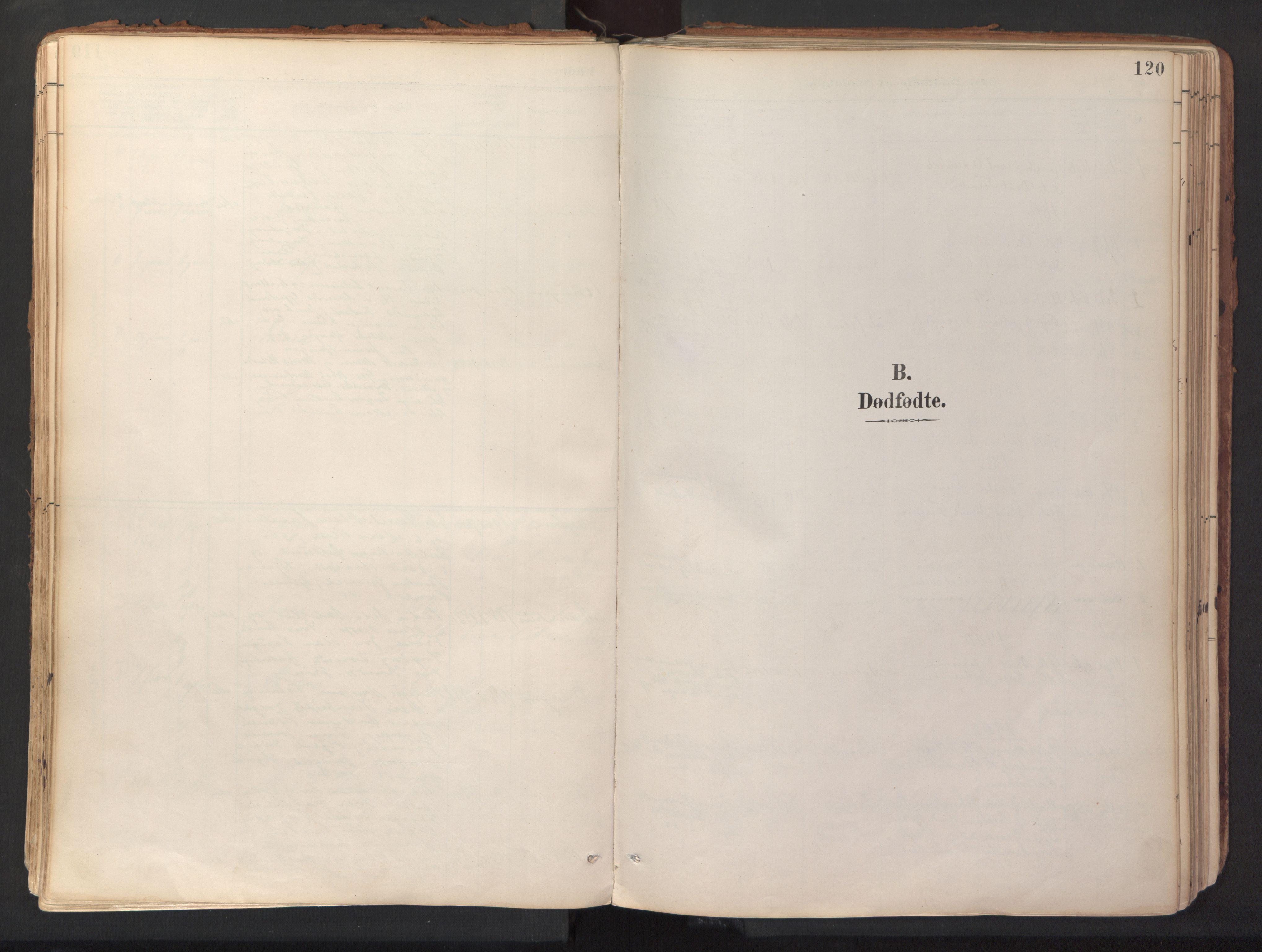 SAT, Ministerialprotokoller, klokkerbøker og fødselsregistre - Sør-Trøndelag, 689/L1041: Parish register (official) no. 689A06, 1891-1923, p. 120