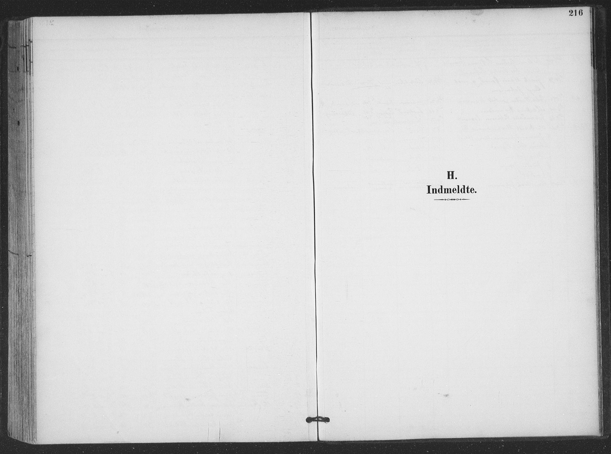 SAT, Ministerialprotokoller, klokkerbøker og fødselsregistre - Nordland, 866/L0939: Parish register (official) no. 866A02, 1894-1906, p. 216