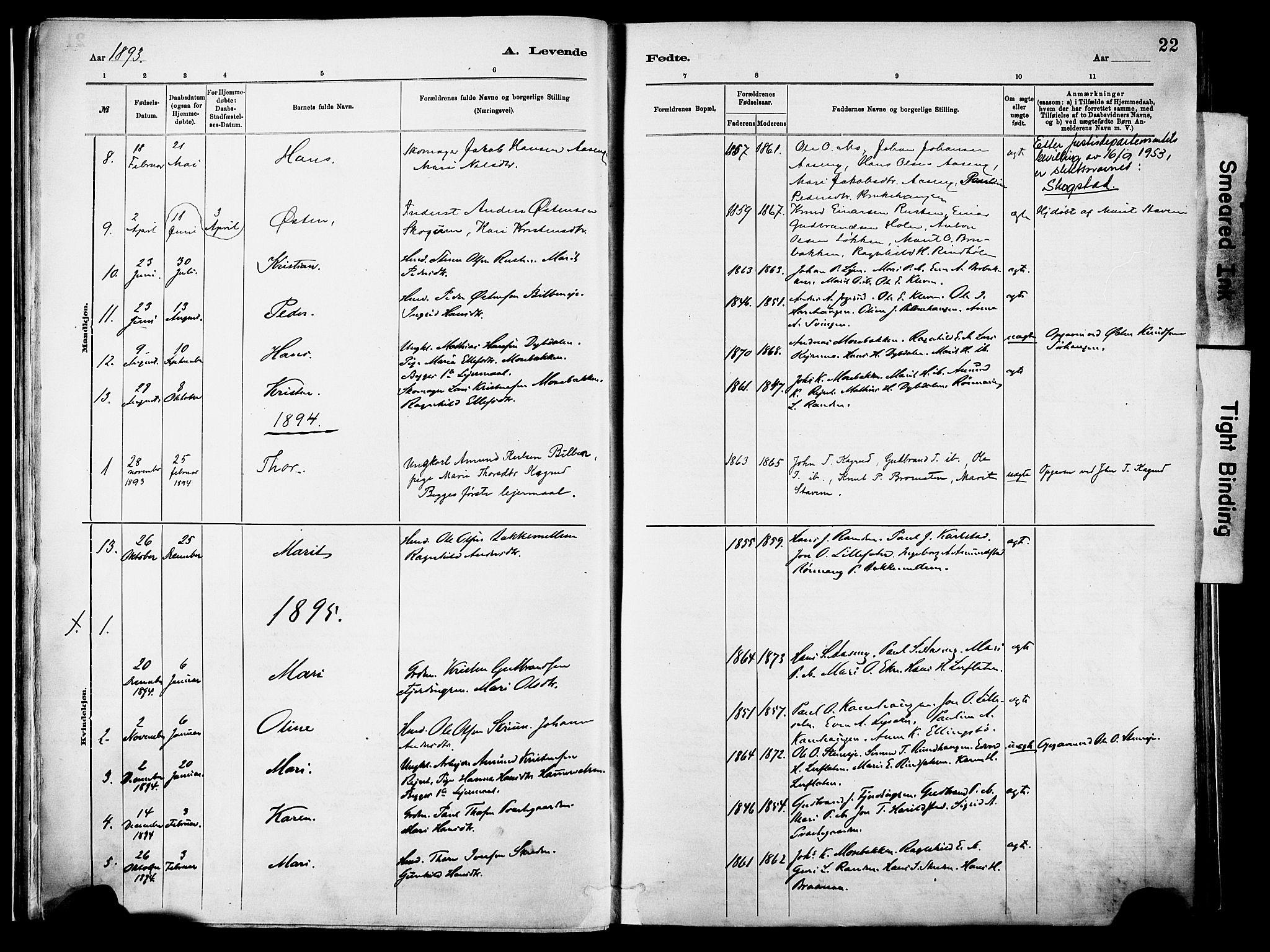 SAH, Vågå prestekontor, Parish register (official) no. 10, 1887-1904, p. 22