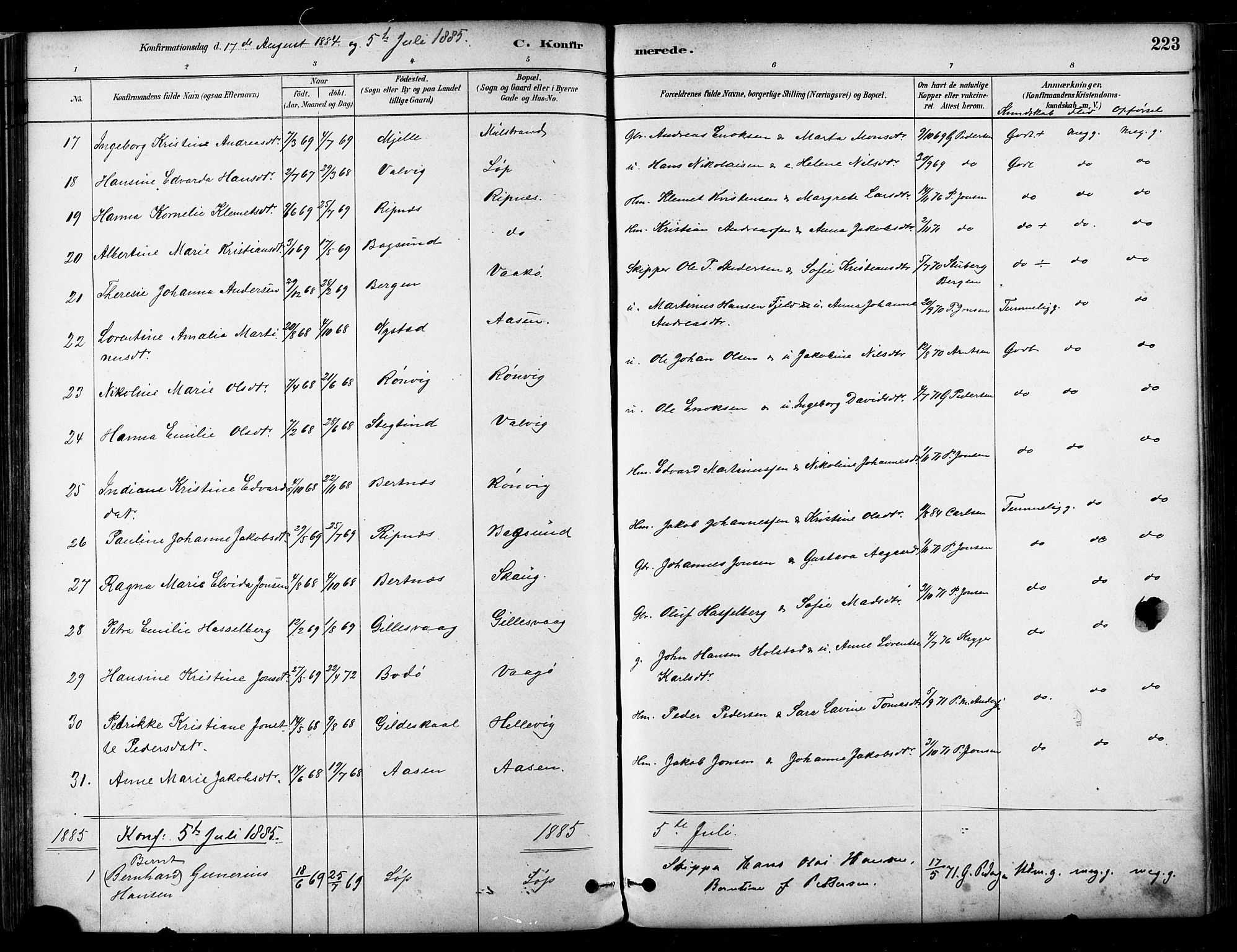 SAT, Ministerialprotokoller, klokkerbøker og fødselsregistre - Nordland, 802/L0054: Parish register (official) no. 802A01, 1879-1893, p. 223