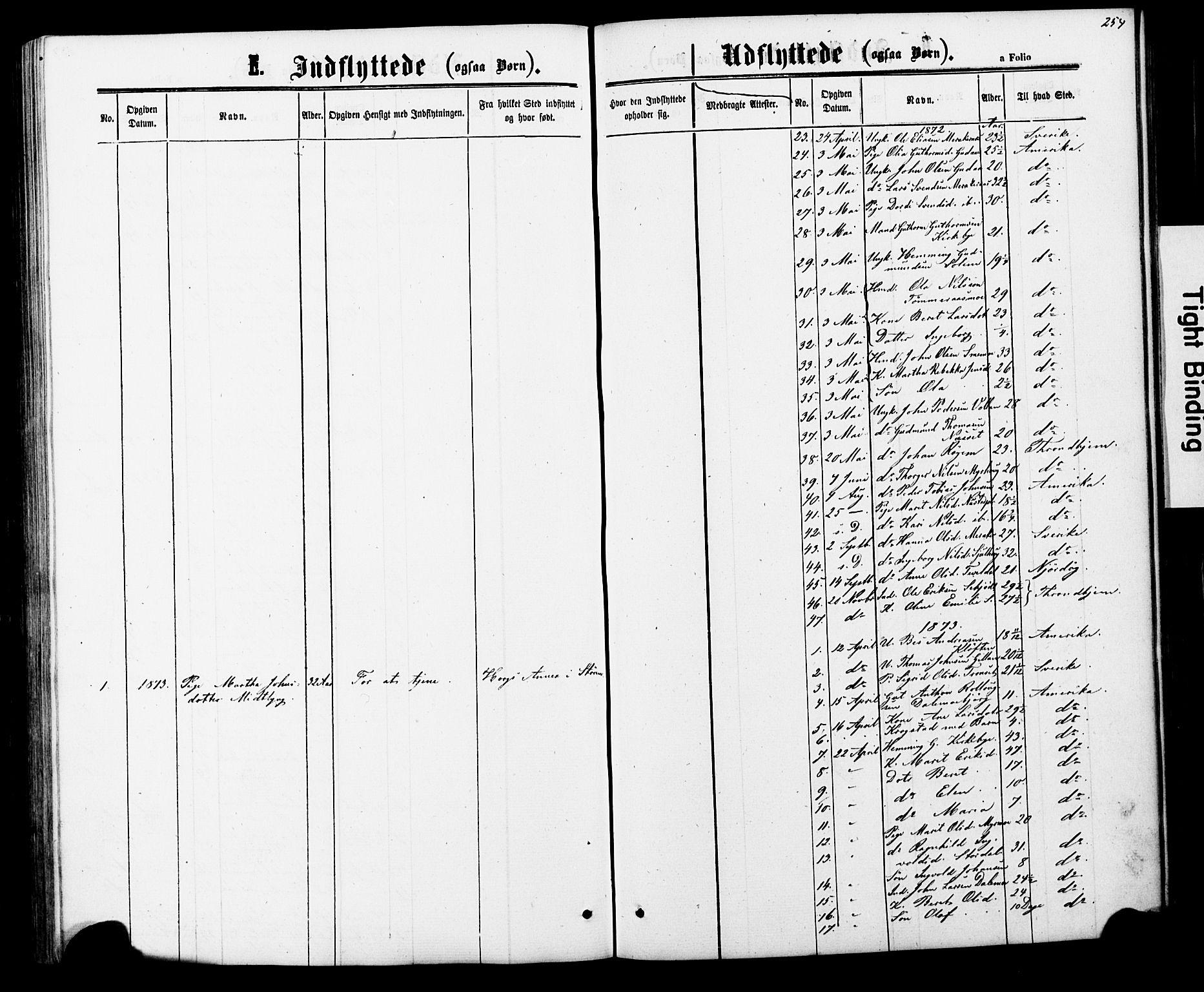 SAT, Ministerialprotokoller, klokkerbøker og fødselsregistre - Nord-Trøndelag, 706/L0049: Parish register (copy) no. 706C01, 1864-1895, p. 254