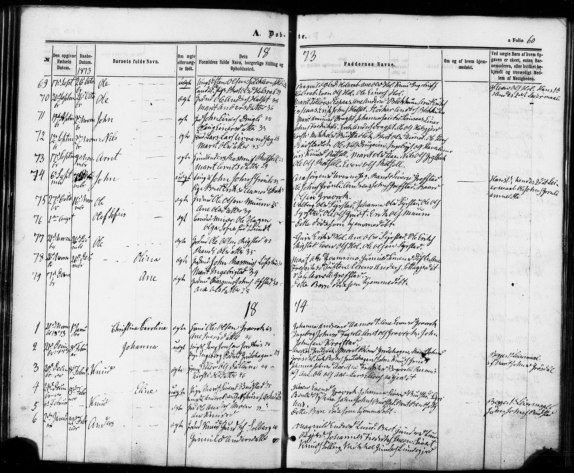 SAT, Ministerialprotokoller, klokkerbøker og fødselsregistre - Sør-Trøndelag, 672/L0856: Parish register (official) no. 672A08, 1861-1881, p. 60