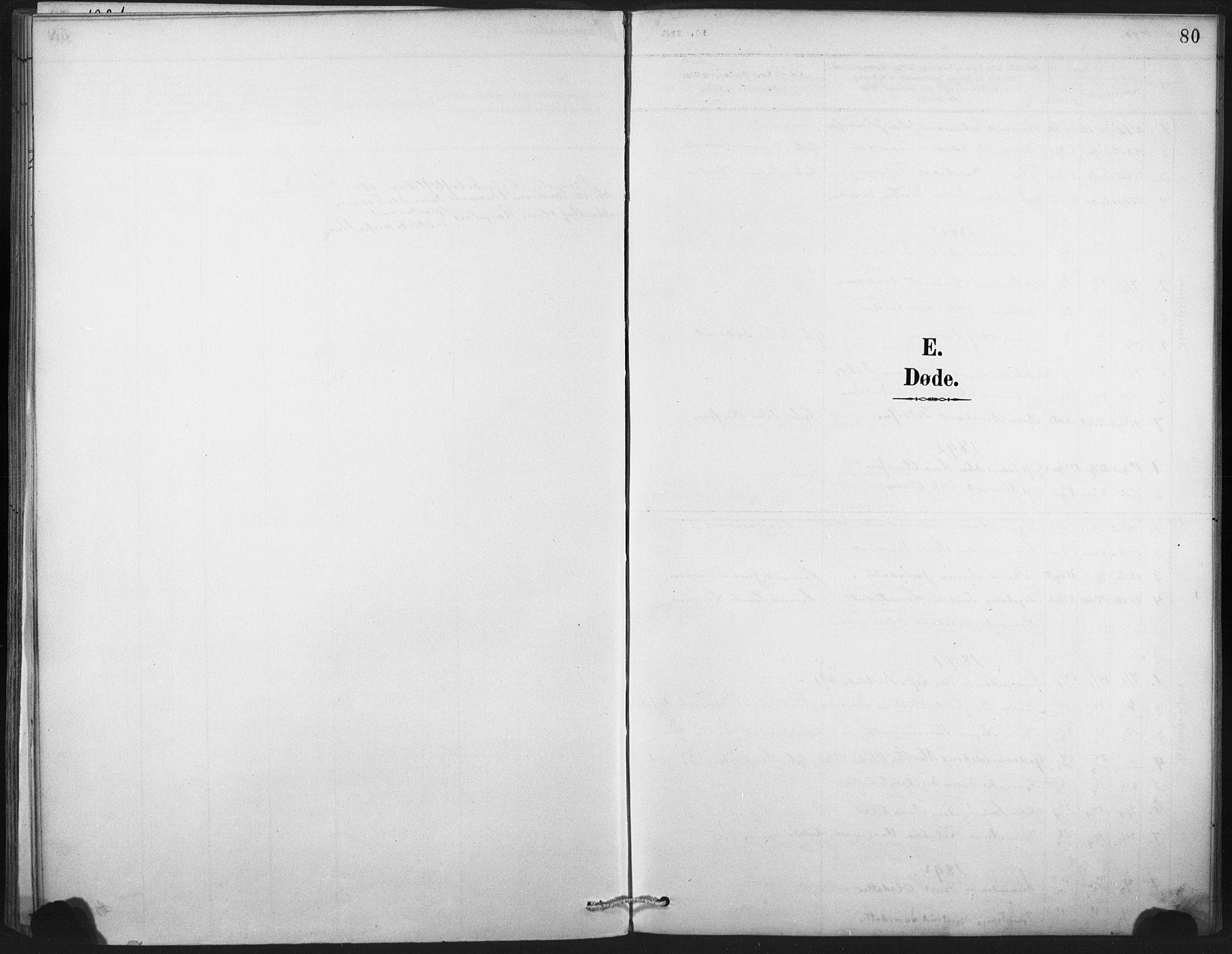 SAT, Ministerialprotokoller, klokkerbøker og fødselsregistre - Nord-Trøndelag, 718/L0175: Parish register (official) no. 718A01, 1890-1923, p. 80