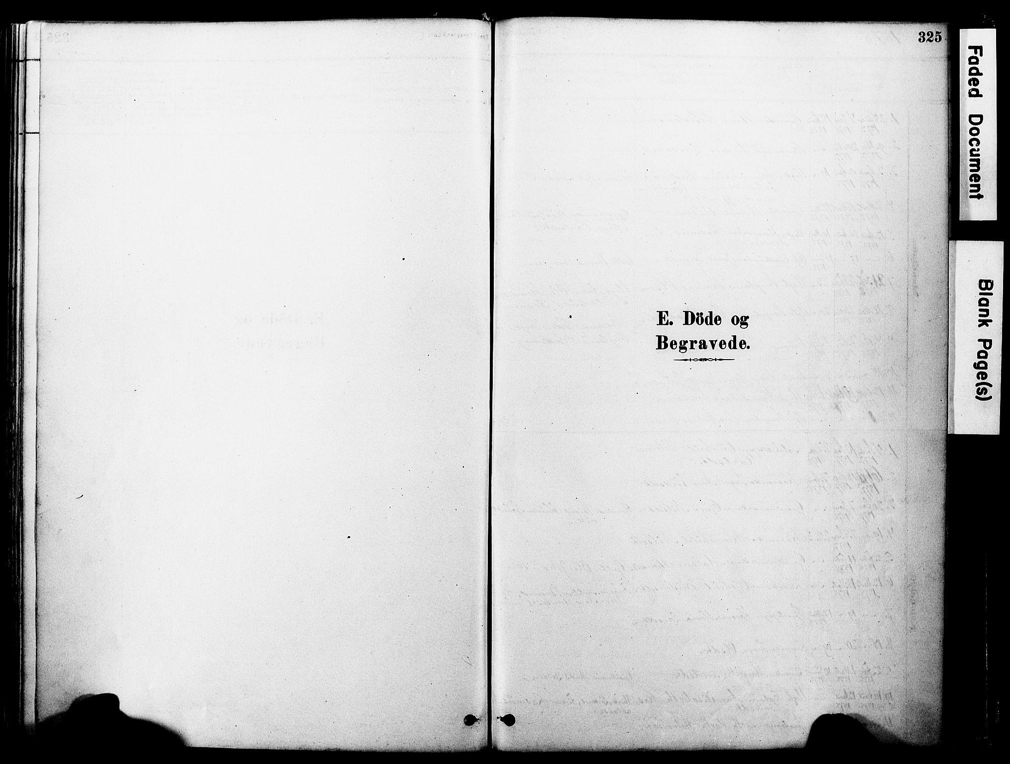 SAT, Ministerialprotokoller, klokkerbøker og fødselsregistre - Møre og Romsdal, 560/L0721: Parish register (official) no. 560A05, 1878-1917, p. 325