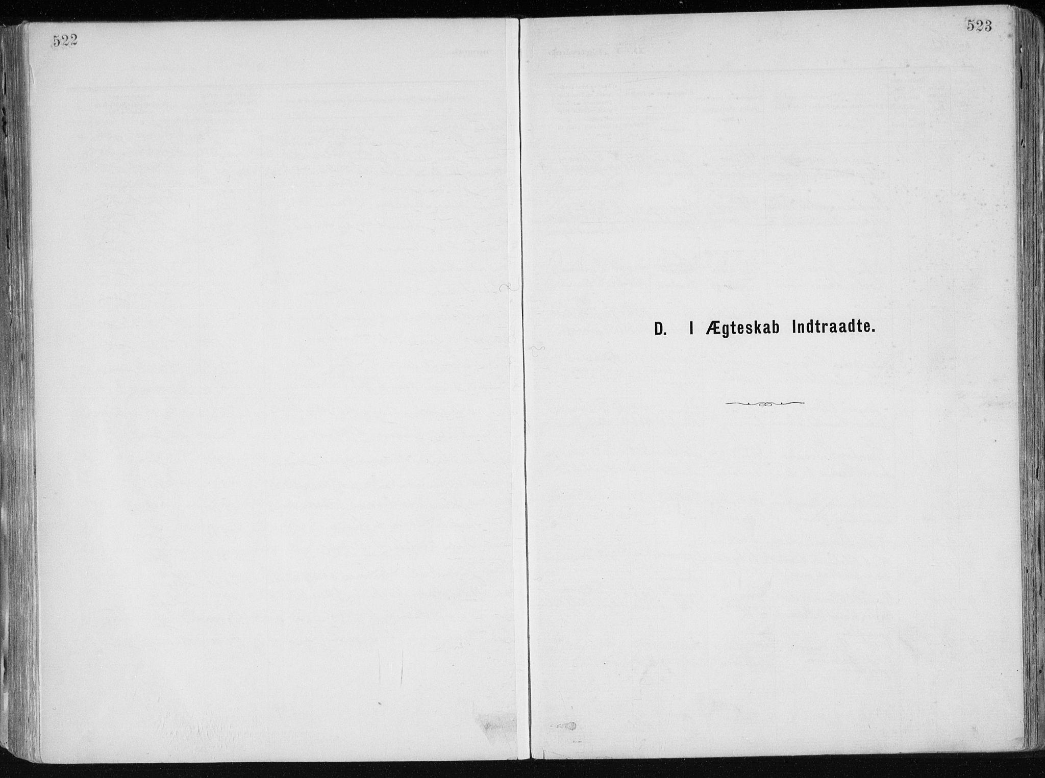 SAK, Dypvåg sokneprestkontor, F/Fa/Faa/L0008: Parish register (official) no. A 8, 1885-1906, p. 522-523
