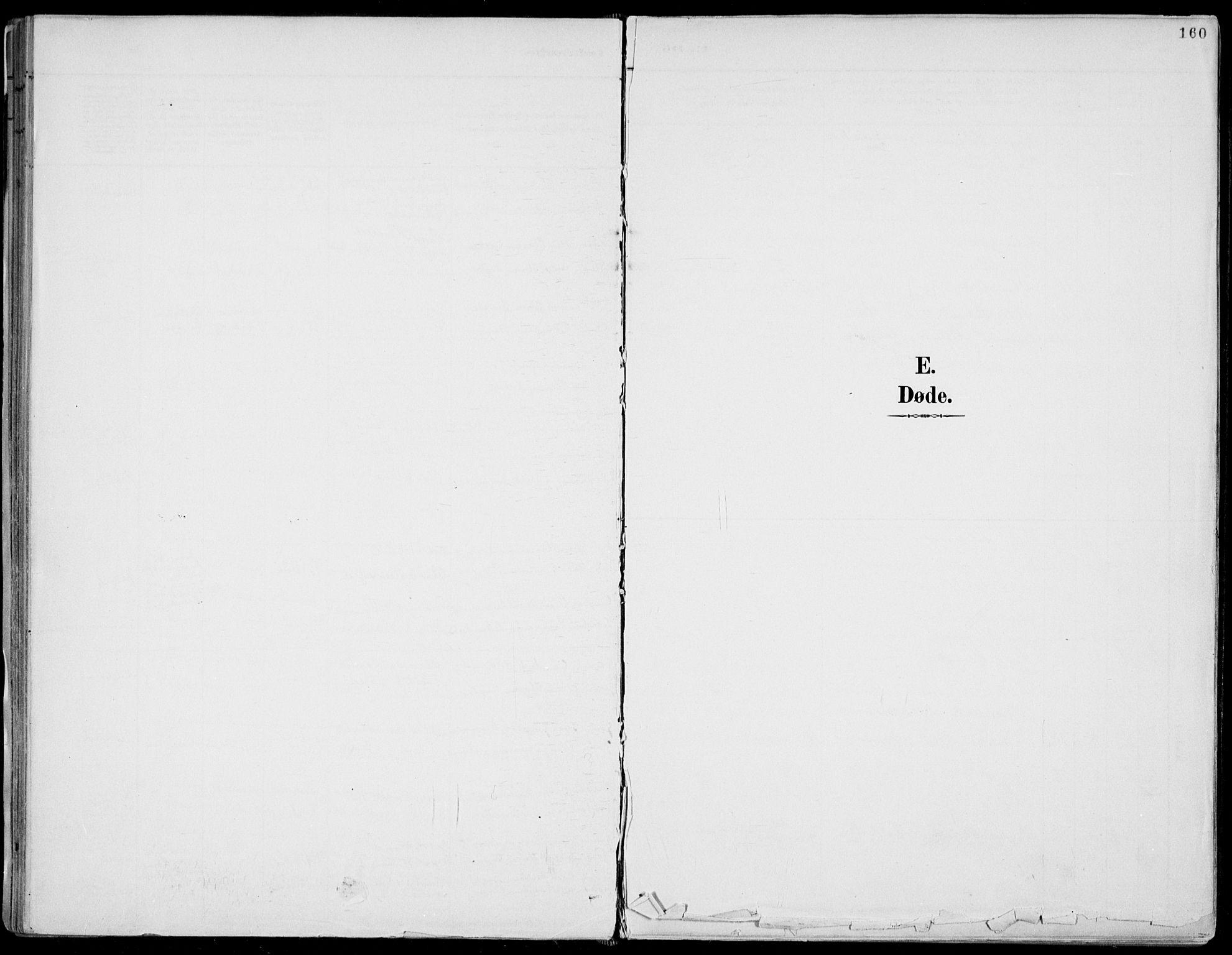 SAKO, Fyresdal kirkebøker, F/Fa/L0007: Parish register (official) no. I 7, 1887-1914, p. 160