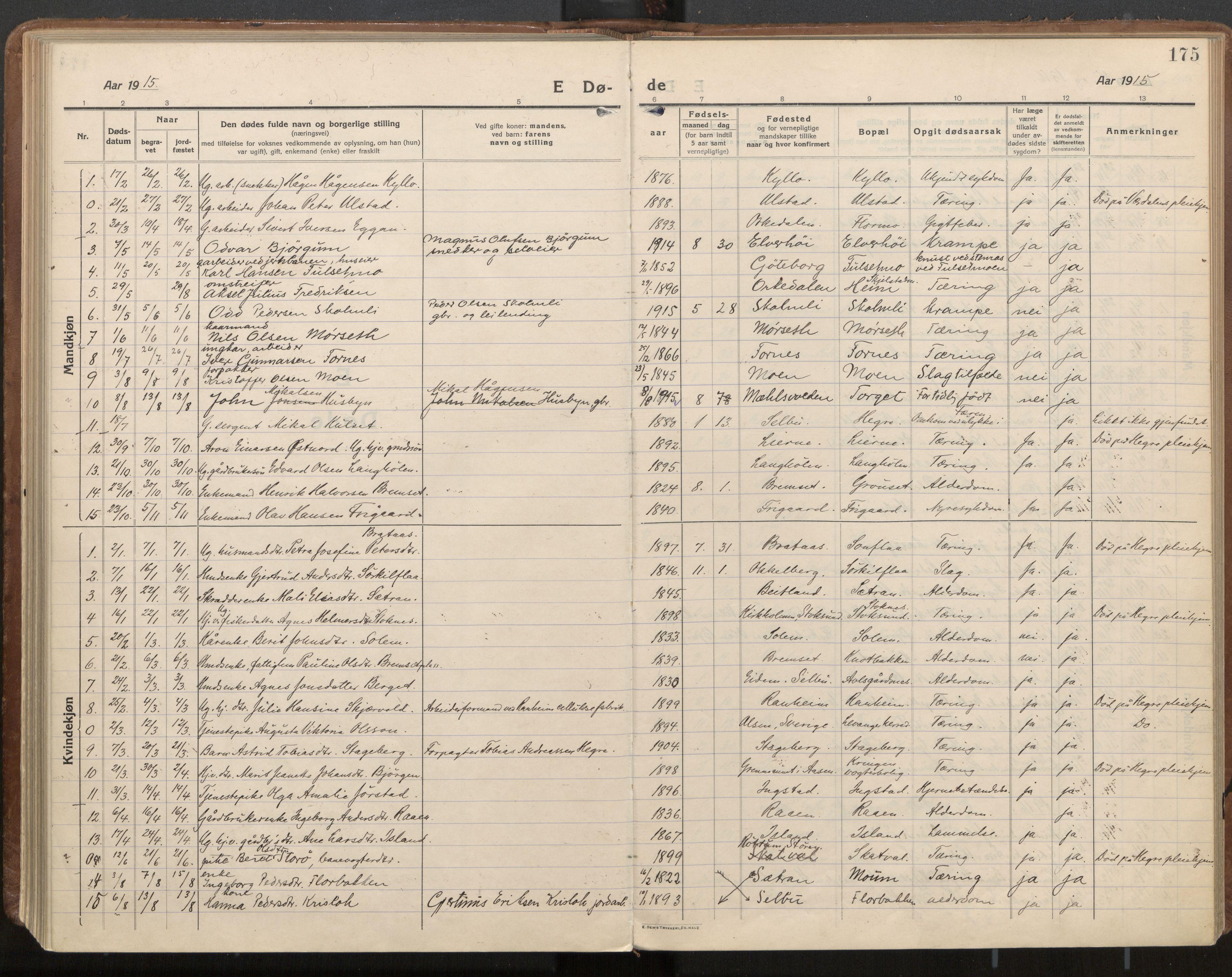 SAT, Ministerialprotokoller, klokkerbøker og fødselsregistre - Nord-Trøndelag, 703/L0037: Parish register (official) no. 703A10, 1915-1932, p. 175