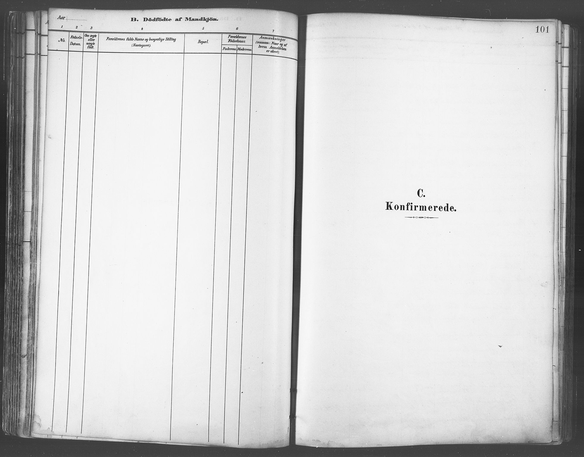 SATØ, Balsfjord sokneprestembete, Parish register (official) no. 5, 1884-1897, p. 101