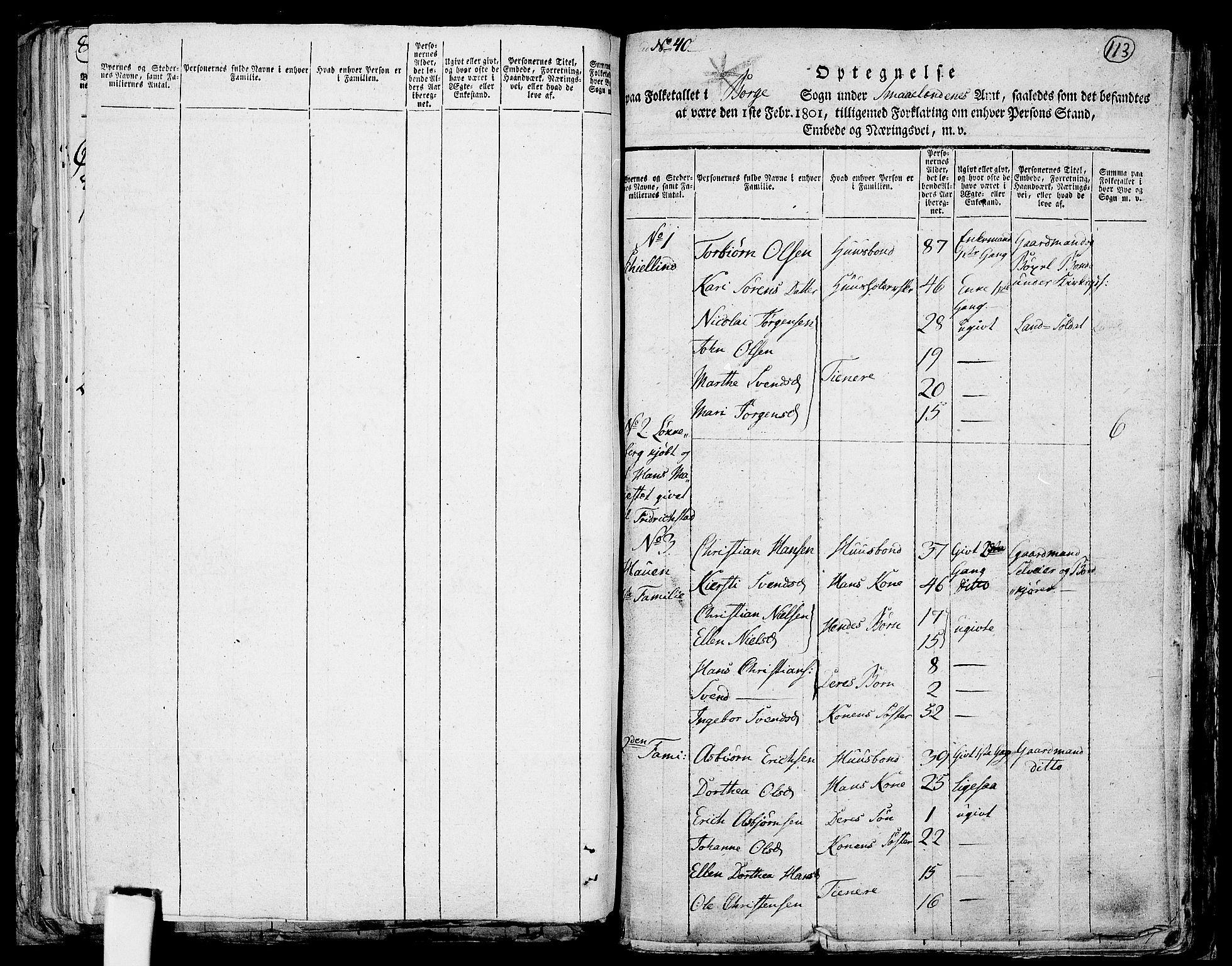 RA, 1801 census for 0113P Borge, 1801, p. 112b-113a