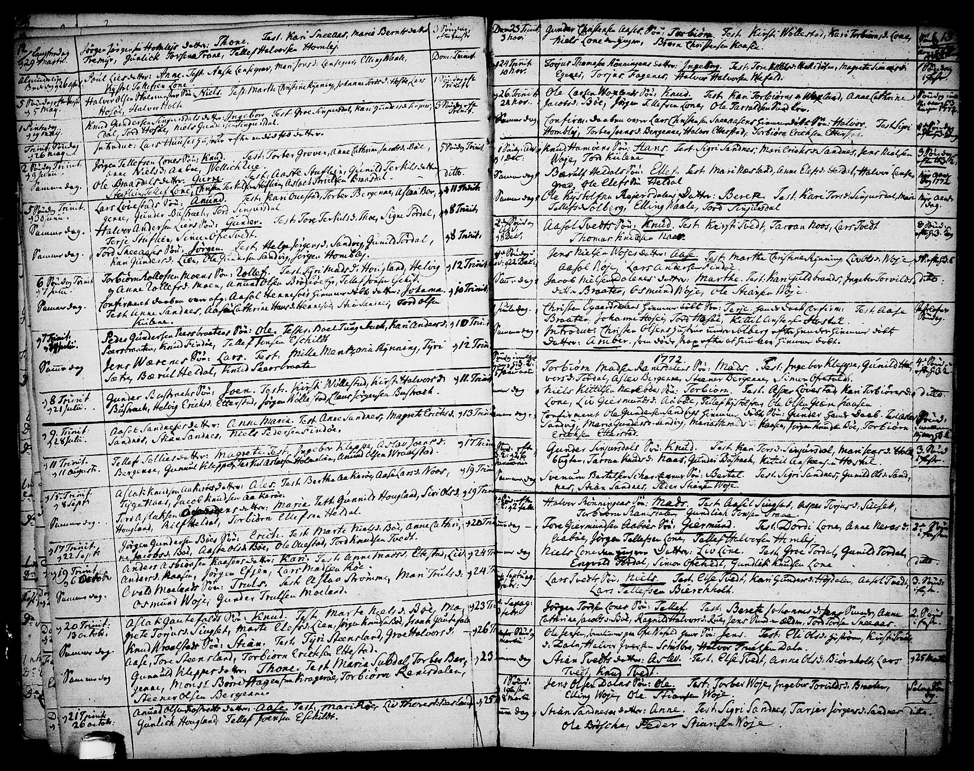 SAKO, Drangedal kirkebøker, F/Fa/L0003: Parish register (official) no. 3, 1768-1814, p. 12-13