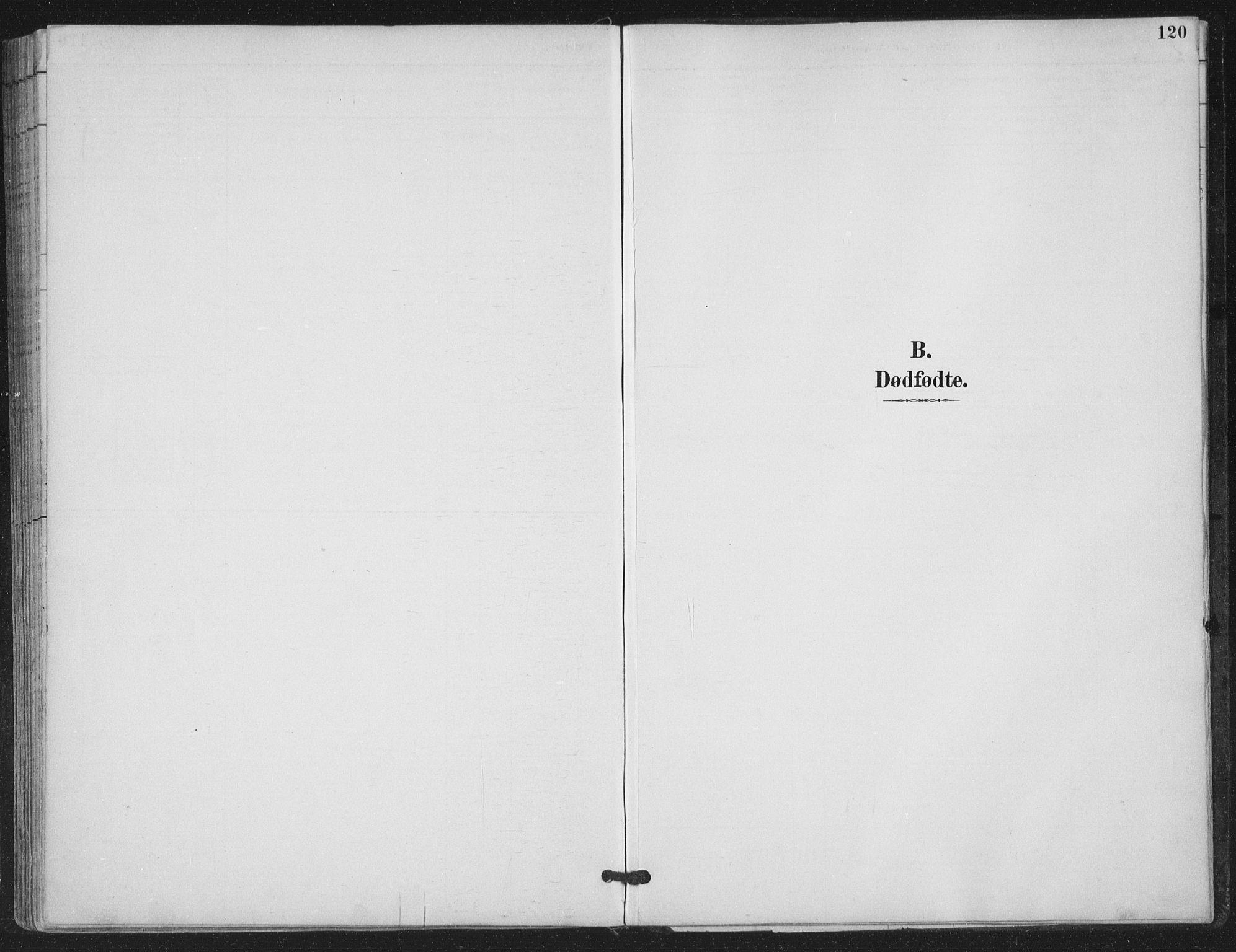 SAT, Ministerialprotokoller, klokkerbøker og fødselsregistre - Nordland, 843/L0628: Parish register (official) no. 843A03, 1889-1907, p. 120