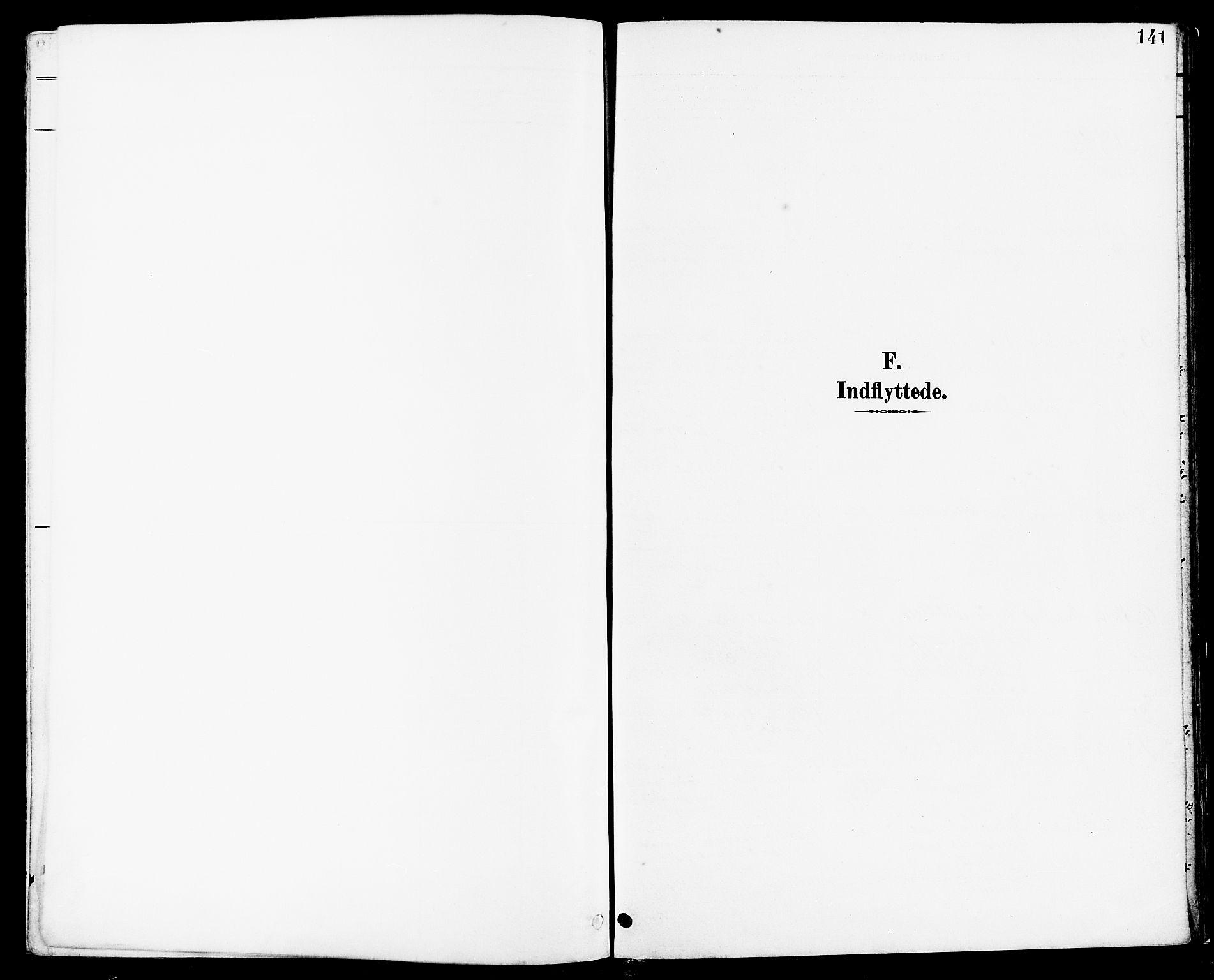 SAST, Høyland sokneprestkontor, 30BA/L0014: Parish register (official) no. A 12, 1890-1898, p. 141