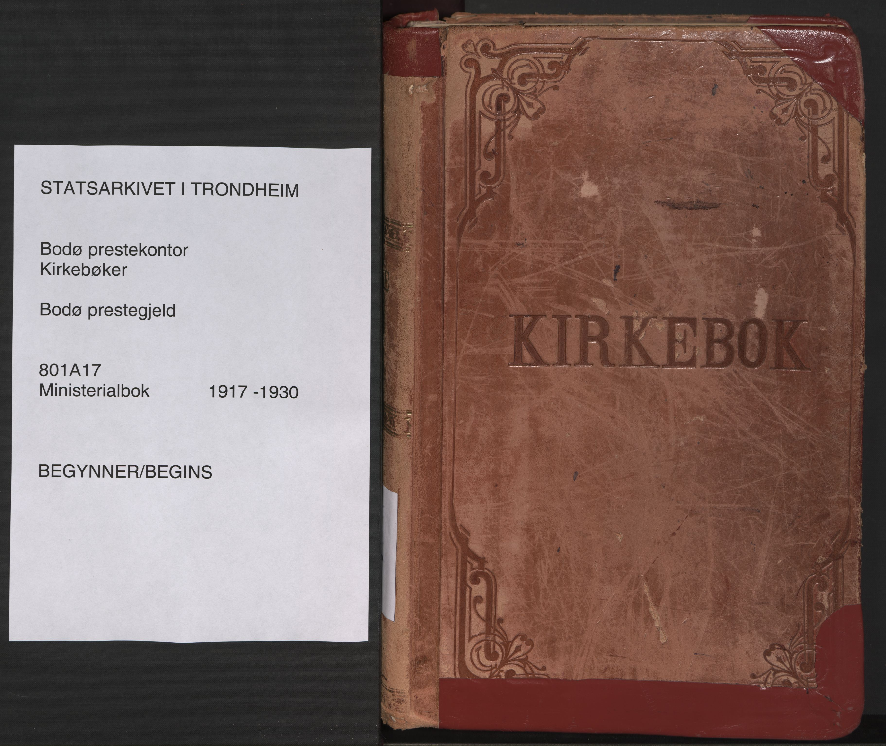 SAT, Ministerialprotokoller, klokkerbøker og fødselsregistre - Nordland, 801/L0017: Parish register (official) no. 801A17, 1917-1930