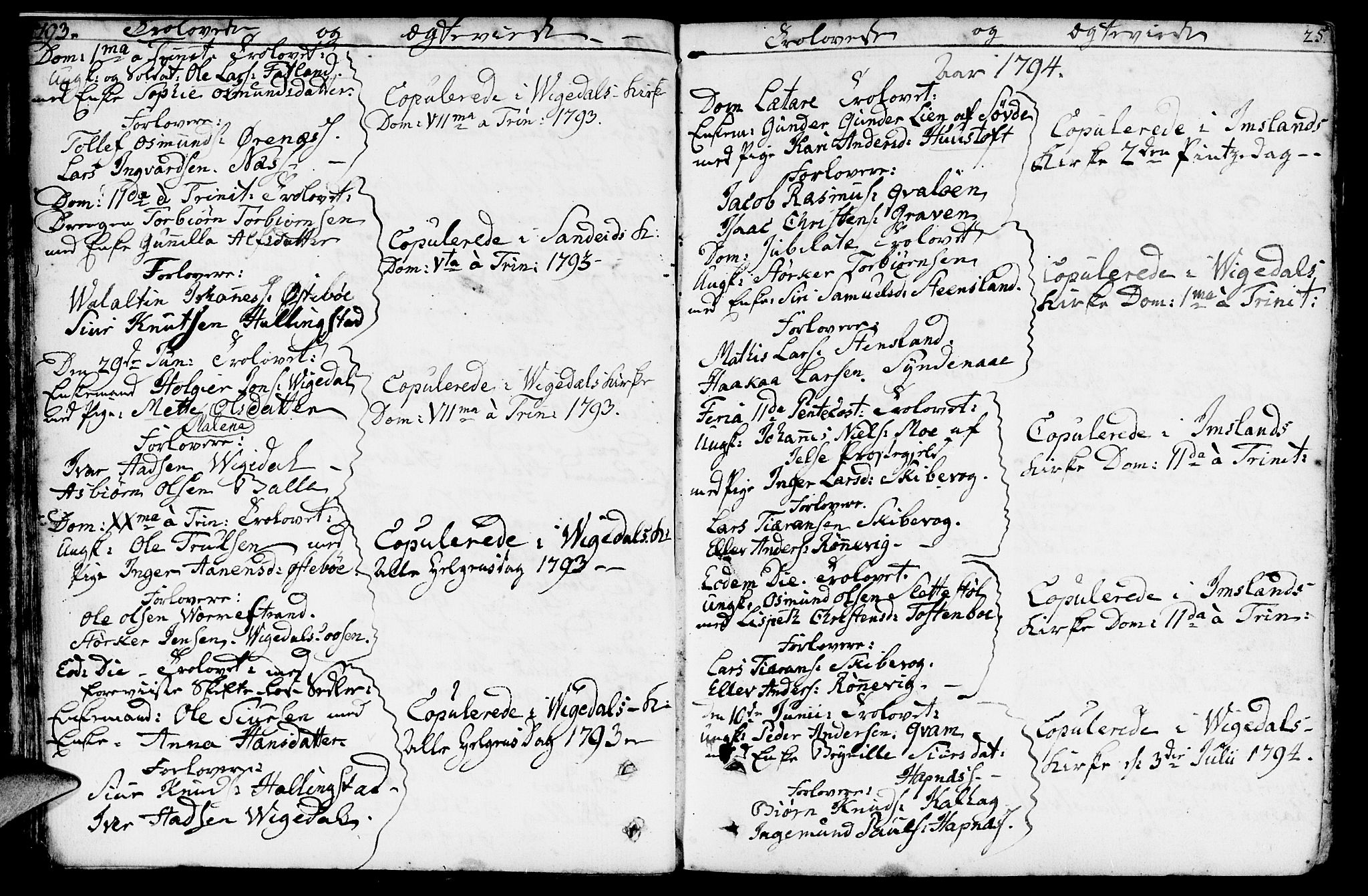 SAST, Vikedal sokneprestkontor, IV: Parish register (official) no. A 2, 1779-1817, p. 25