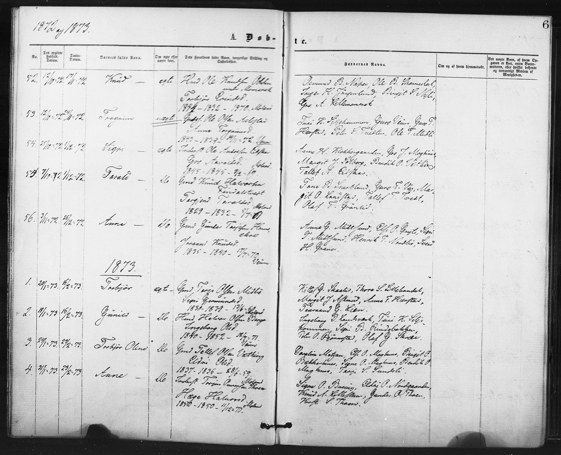 SAKO, Fyresdal kirkebøker, F/Fa/L0006: Parish register (official) no. I 6, 1872-1886, p. 6