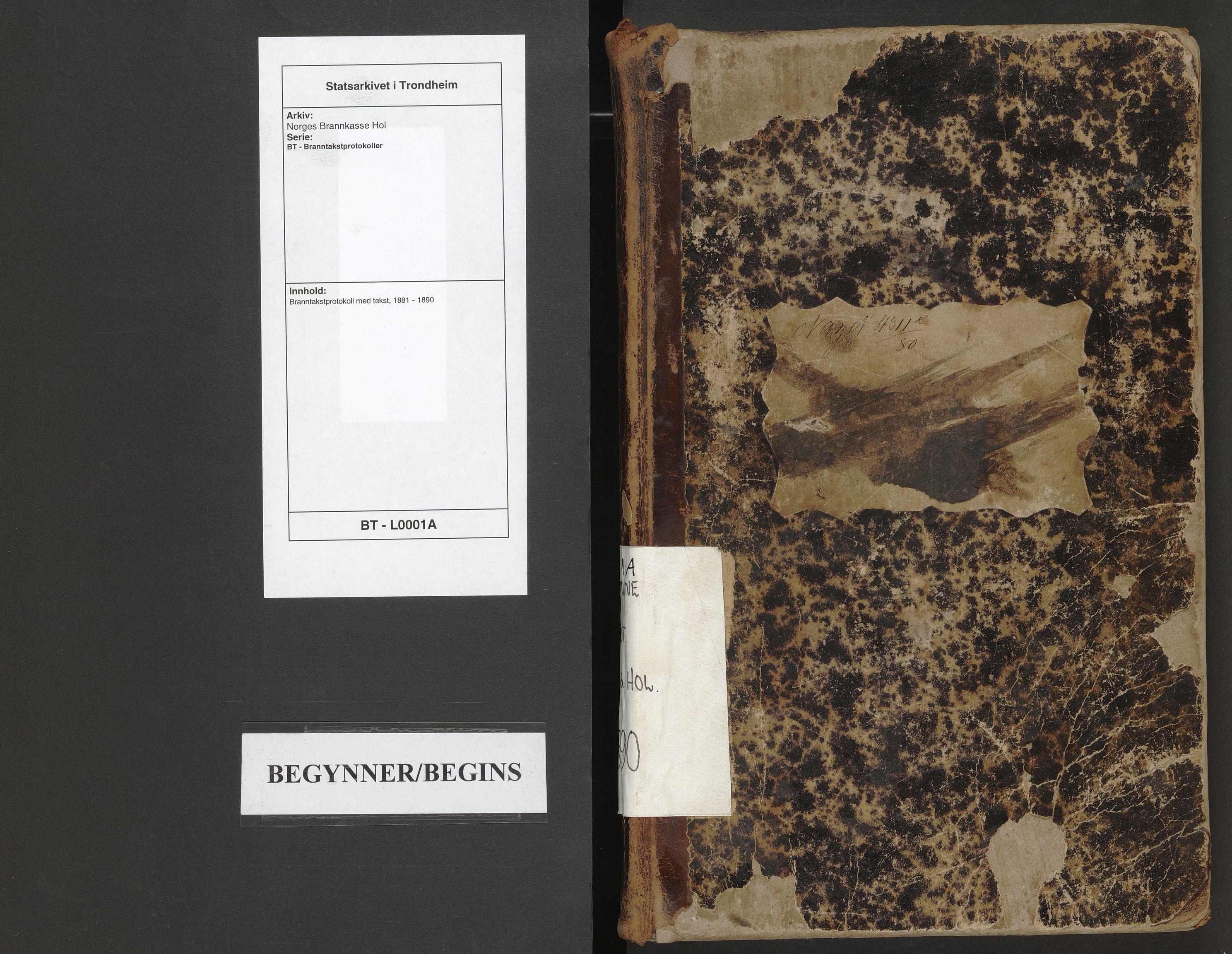 SAT, Norges Brannkasse Hol, BT/L0001A: Branntakstprotokoll med tekst, 1881-1890