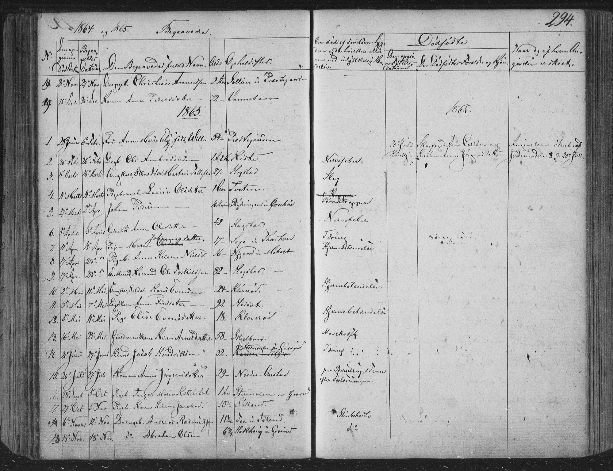 SAKO, Siljan kirkebøker, F/Fa/L0001: Parish register (official) no. 1, 1831-1870, p. 294