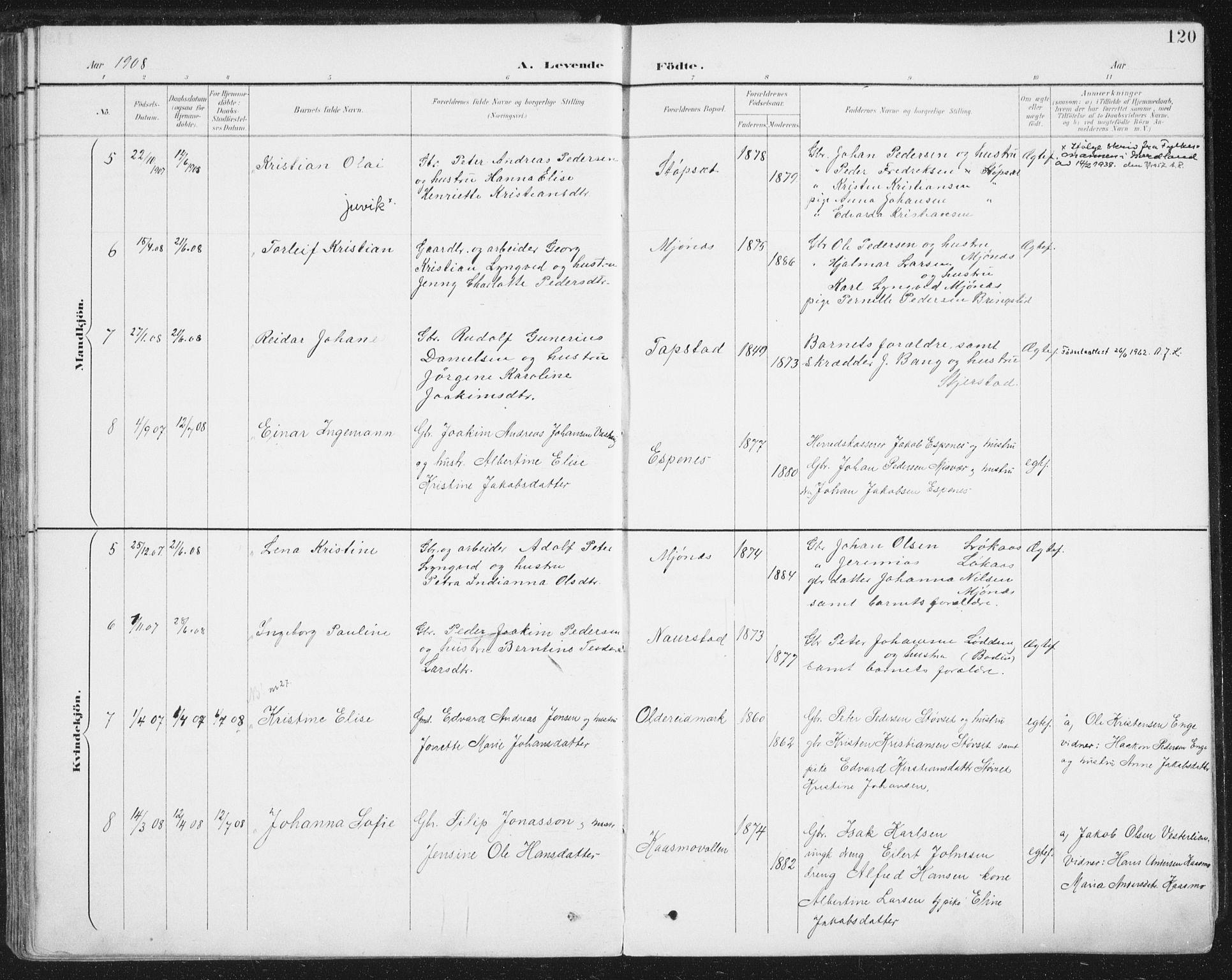 SAT, Ministerialprotokoller, klokkerbøker og fødselsregistre - Nordland, 852/L0741: Parish register (official) no. 852A11, 1894-1917, p. 120