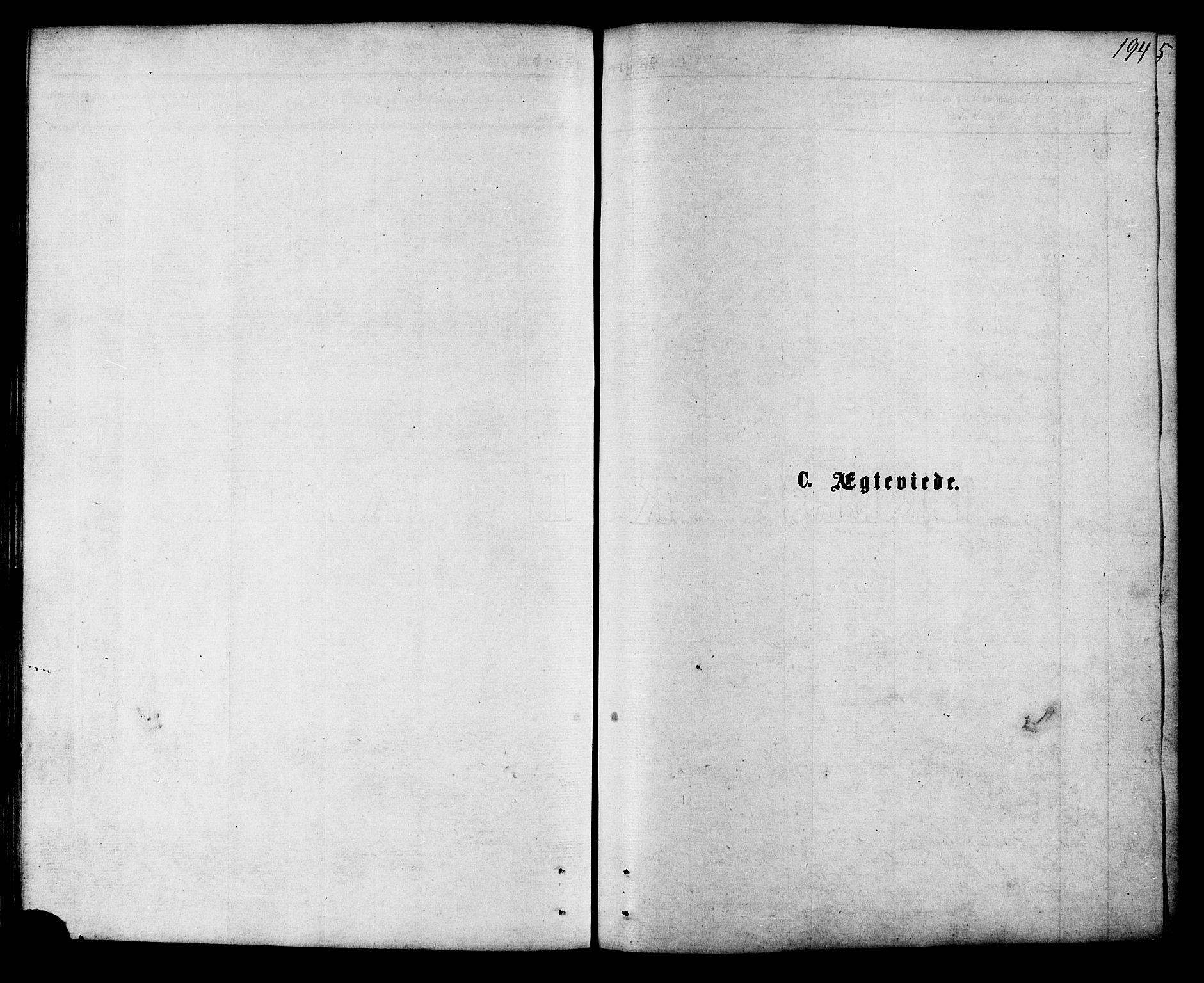 SAT, Ministerialprotokoller, klokkerbøker og fødselsregistre - Nordland, 853/L0771: Parish register (official) no. 853A10, 1870-1881, p. 194