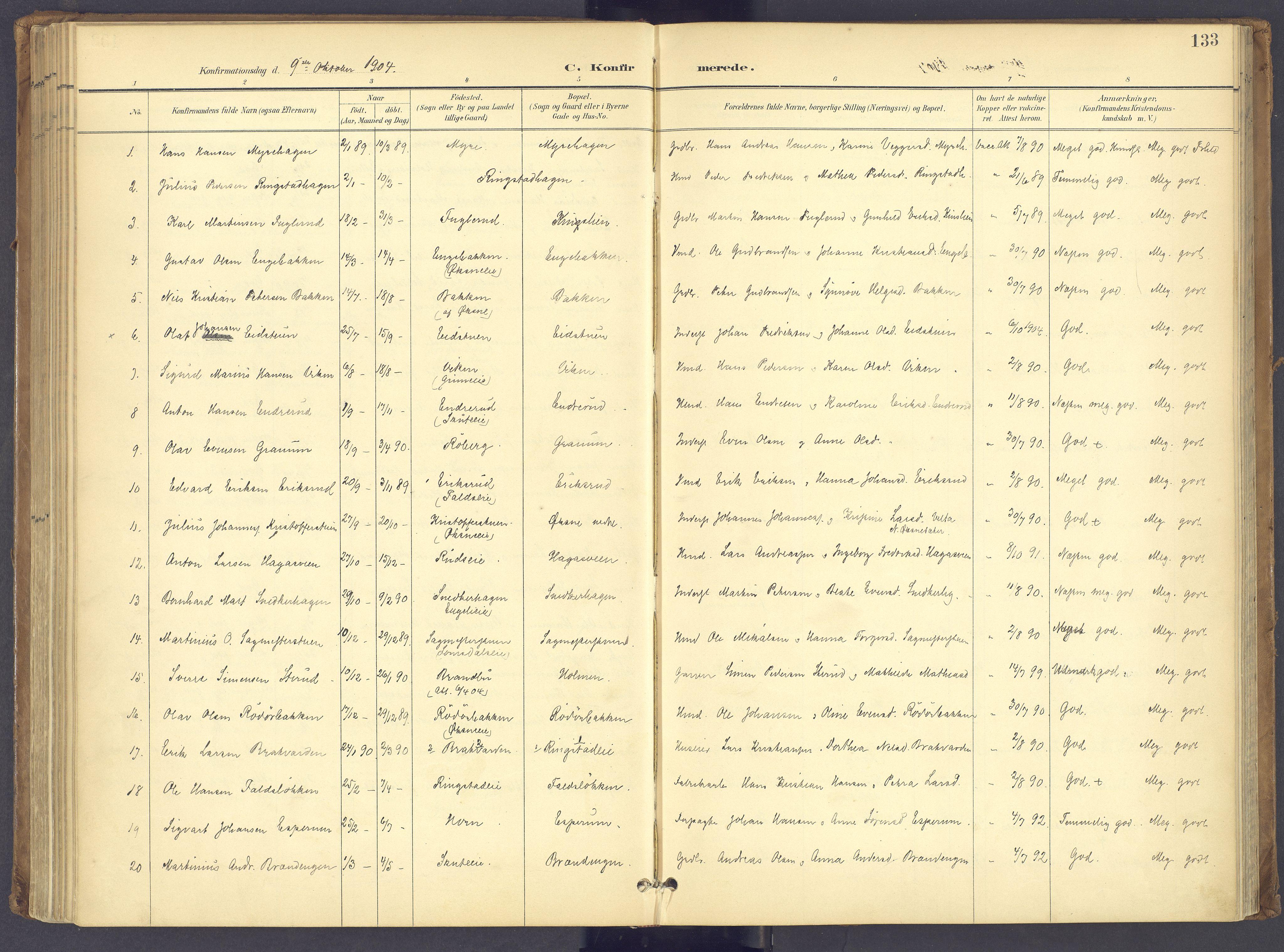 SAH, Søndre Land prestekontor, K/L0006: Parish register (official) no. 6, 1895-1904, p. 133