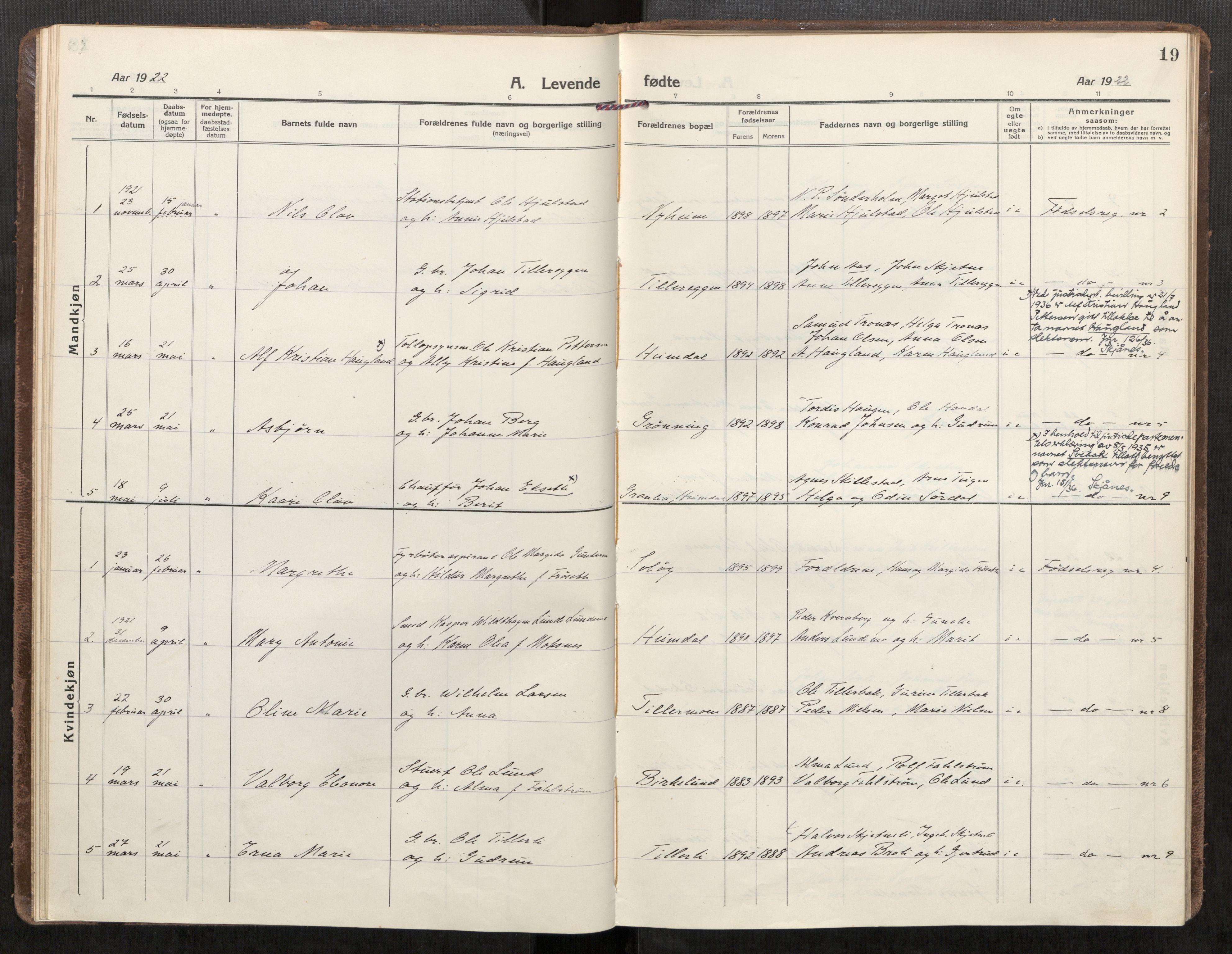 SAT, Klæbu sokneprestkontor, Parish register (official) no. 3, 1917-1924, p. 19