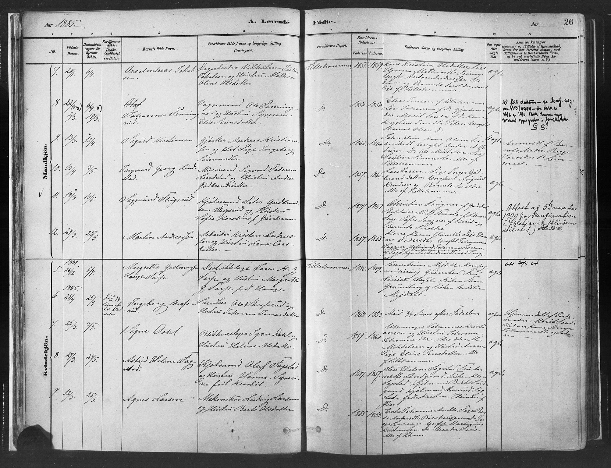 SAH, Fåberg prestekontor, H/Ha/Haa/L0010: Parish register (official) no. 10, 1879-1900, p. 26