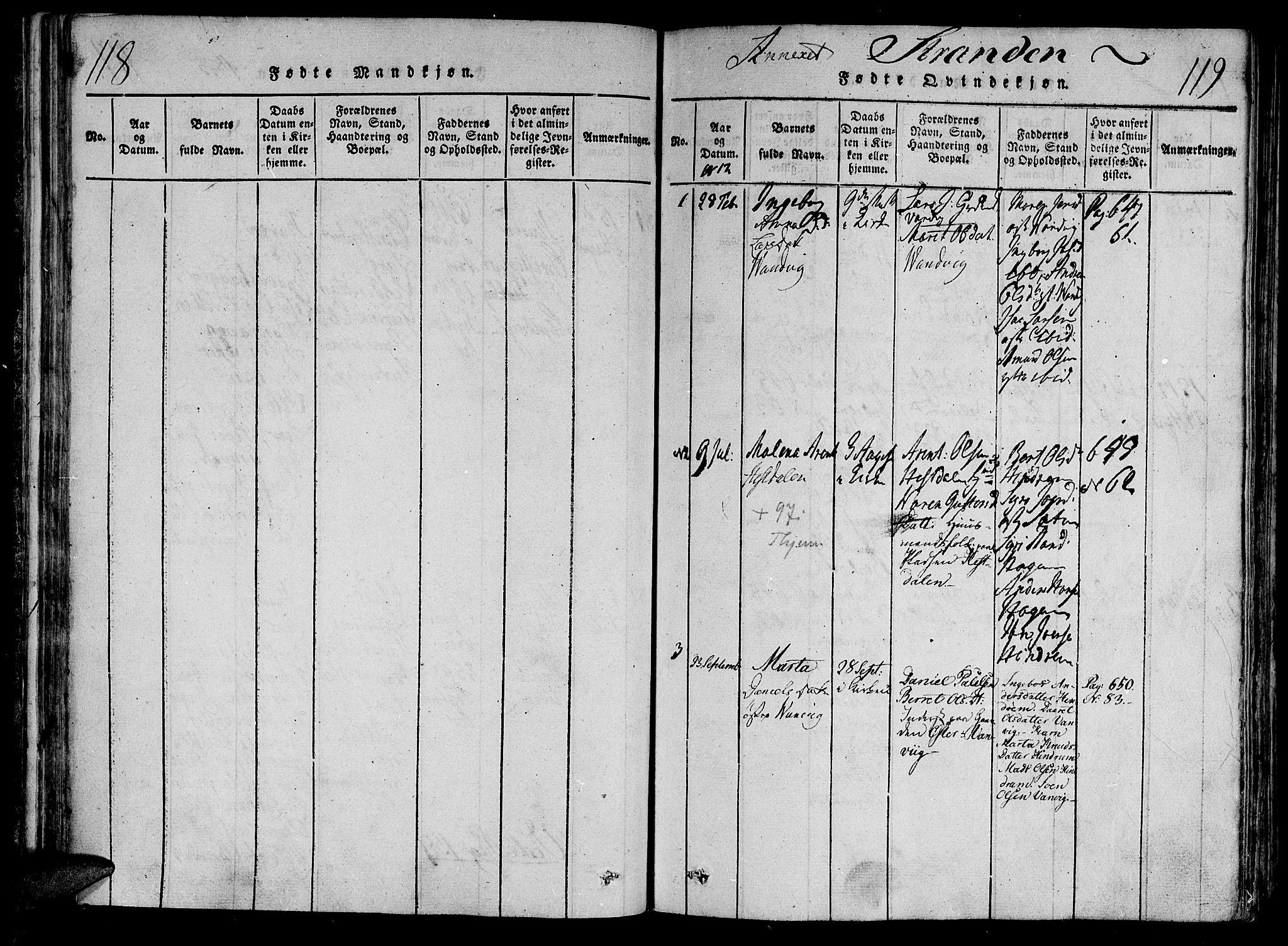 SAT, Ministerialprotokoller, klokkerbøker og fødselsregistre - Nord-Trøndelag, 701/L0005: Parish register (official) no. 701A05 /2, 1816-1825, p. 118-119